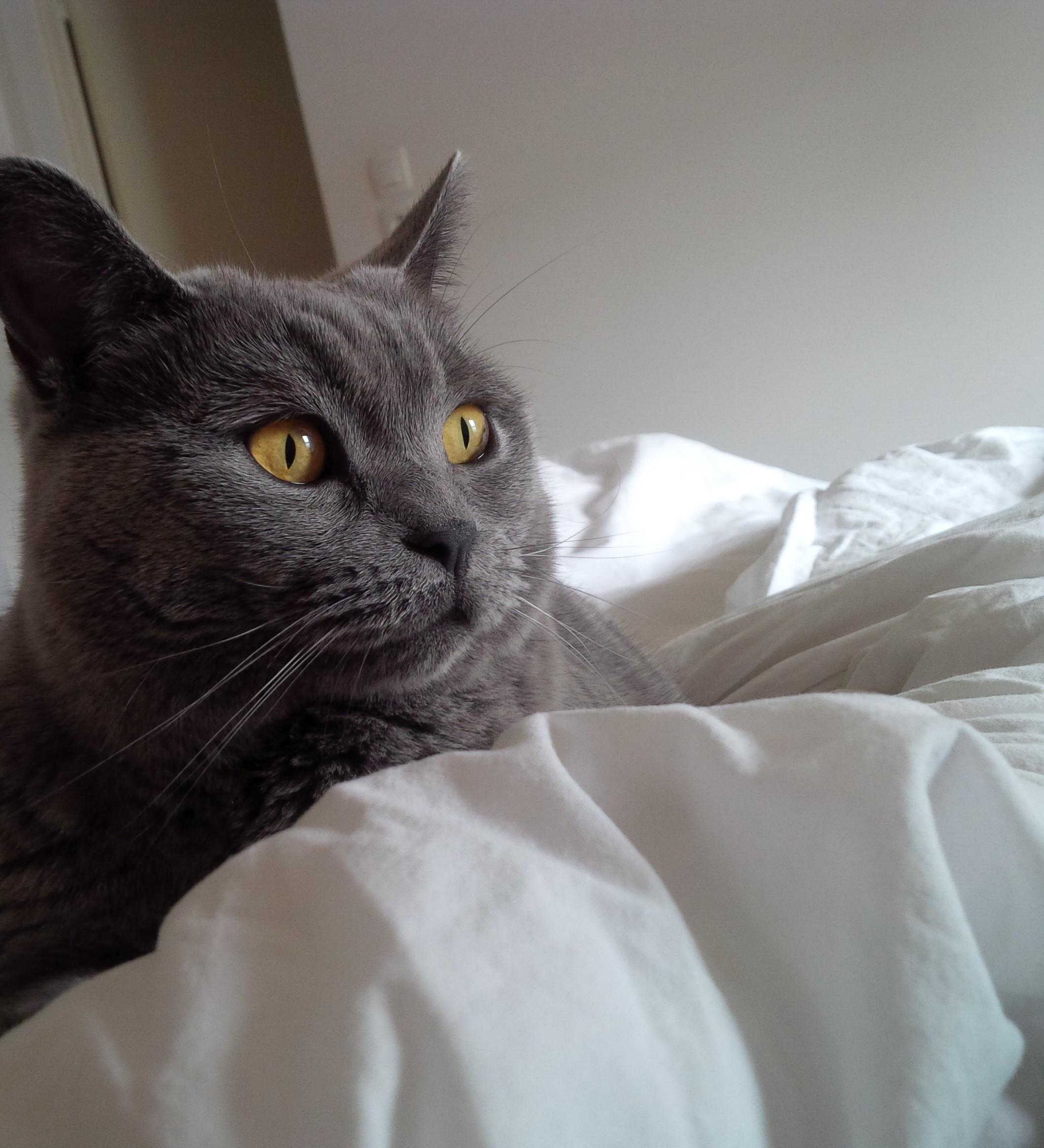 | slow morning |