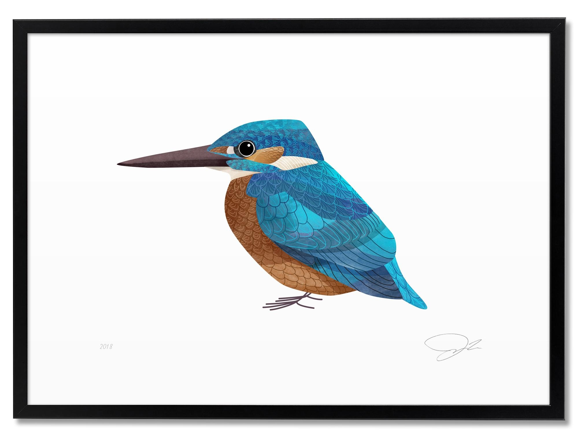 A king fisher by me. One of my favourite birds. You can see them in the ponds near home. #illustration #prints #drucke