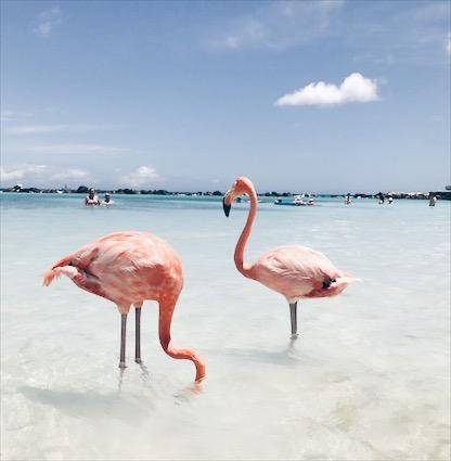 About last Summer.