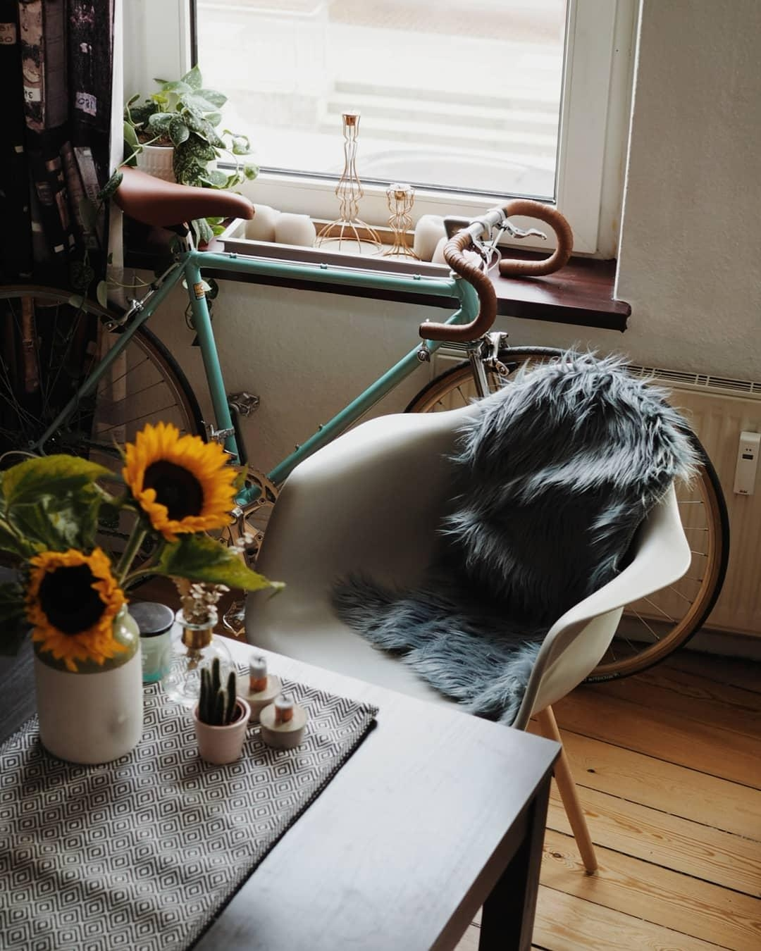 Advice from a sunflower : be bright, sunny and positive.  