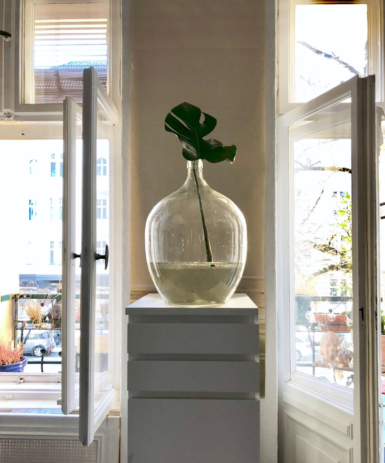 #altbau #berlin #monstera #weinballon #vase
