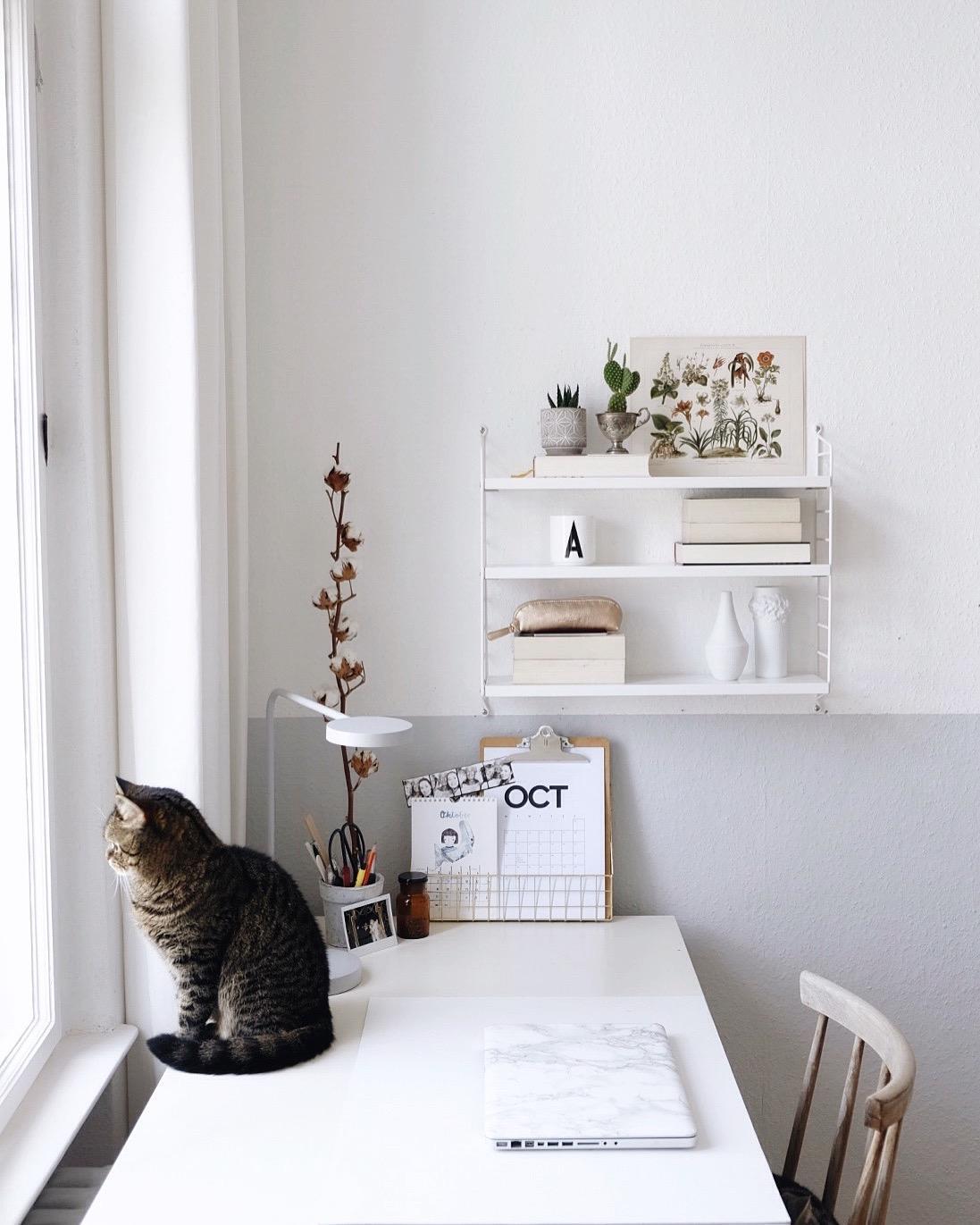 Schreibtisch weiß mit regal  Arbeitsplatz mit Katze #arbeitsplatz #workspace #sc... • COUCHstyle