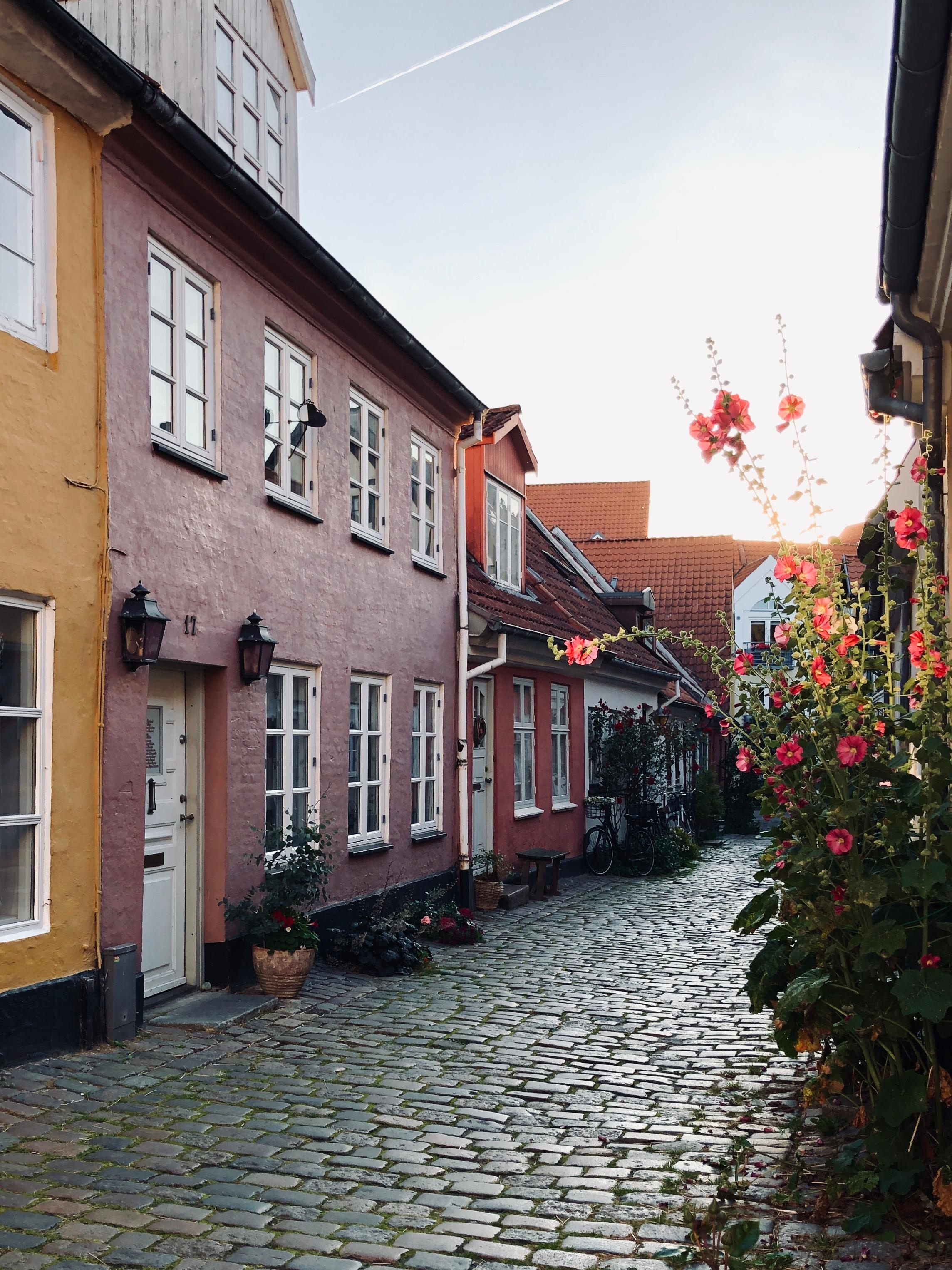 Beautiful tiny alley in aalborg eveninglight vistidenmark weekendtrip  9dd3696f 6832 46c9 9d03 16dbd3bd2042