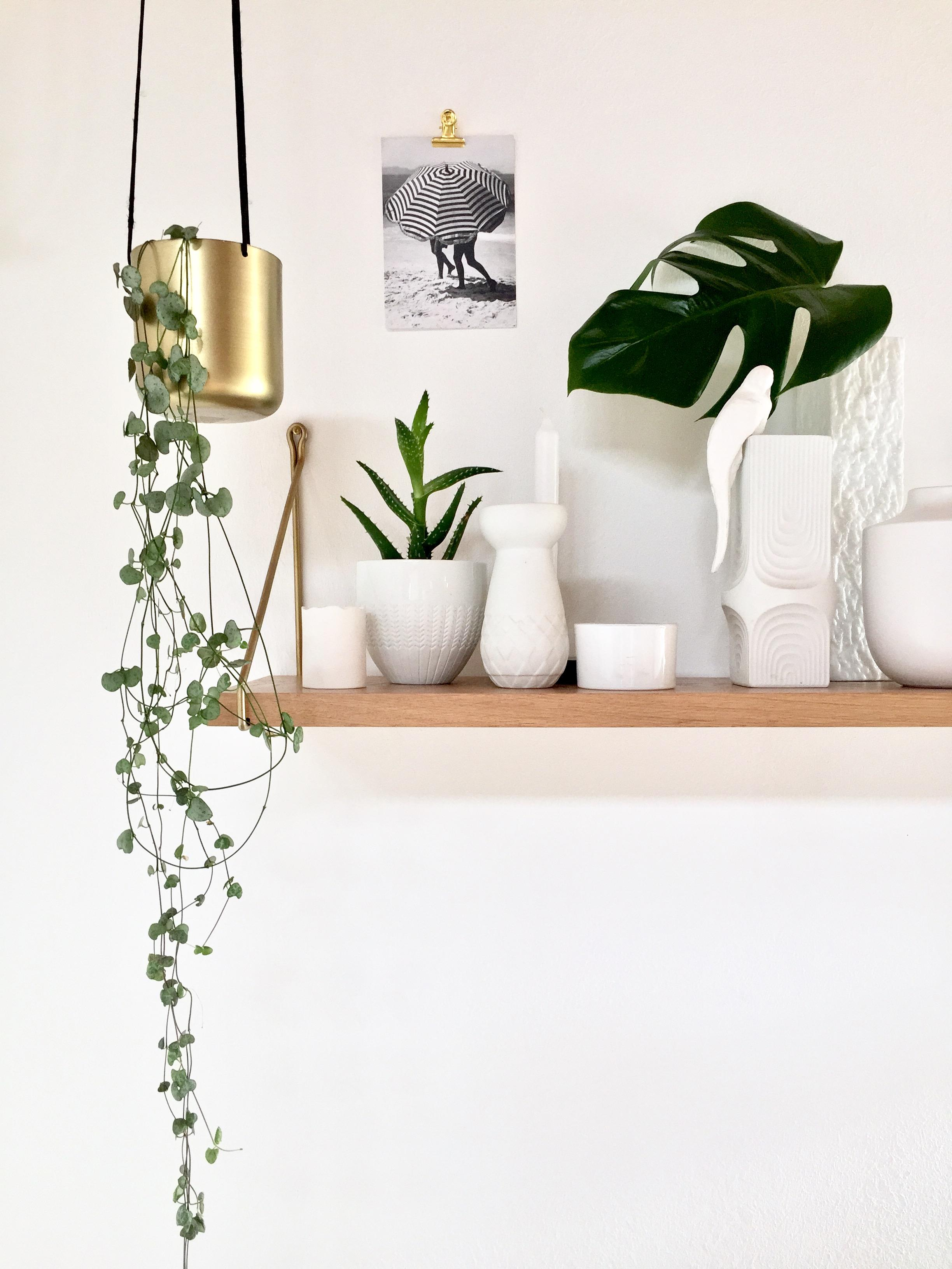 Regale Dekorativ Gestalten Inspiration Bei Couch