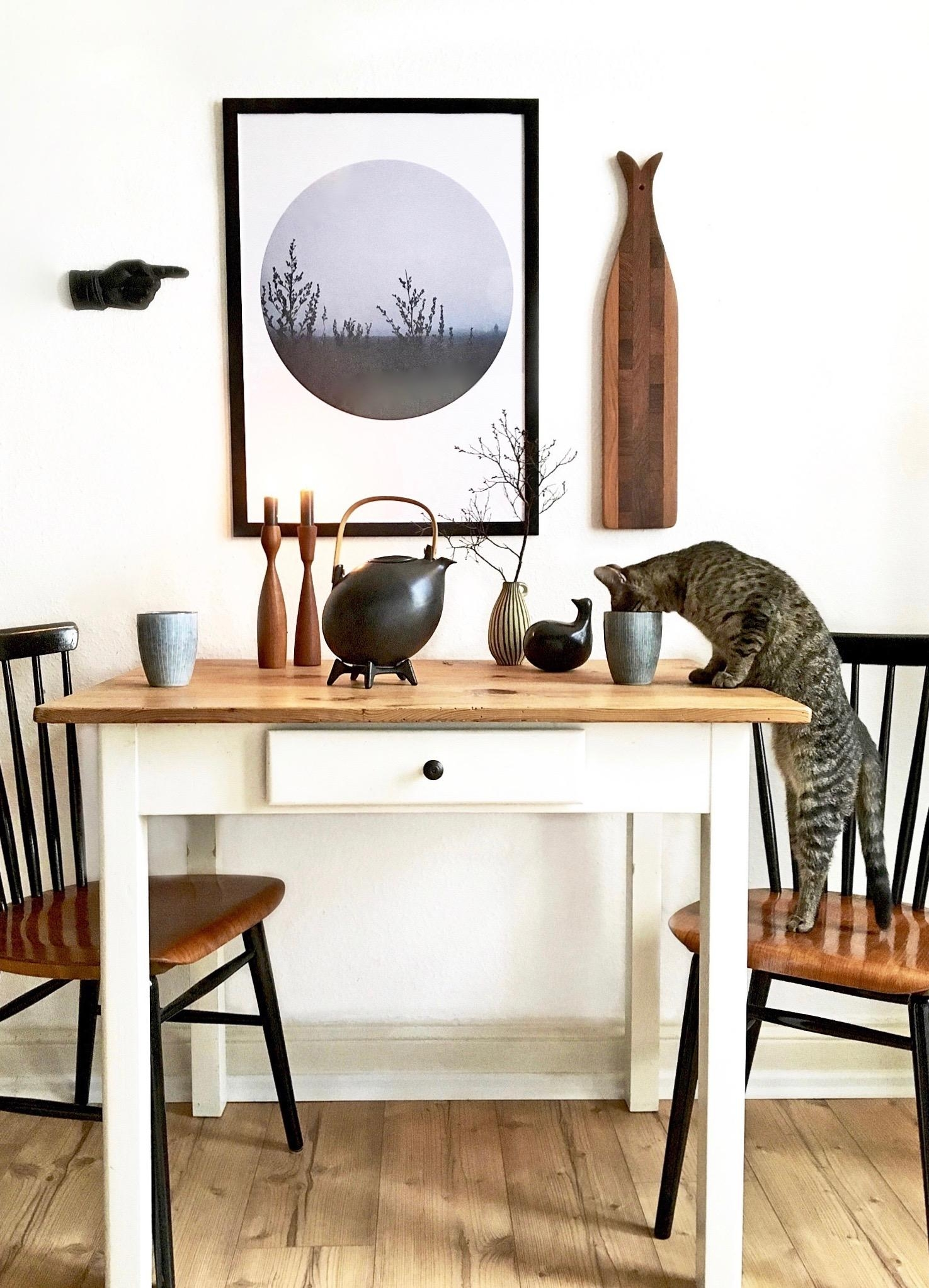 Coffee  time with cat and our new poster  kueche etsyshop altbauwohnung poster midcentury vintage  07aed252 00af 43a1 8107 0fa5ef0477d8
