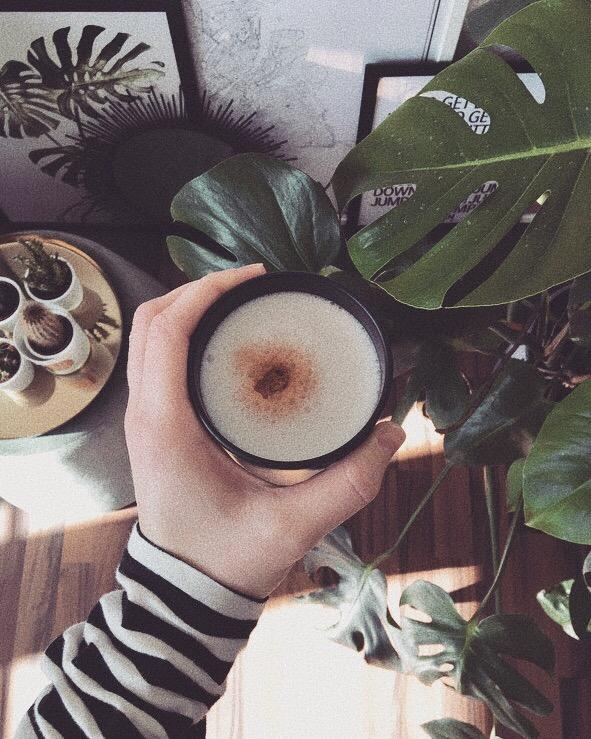 Coffee and Plants 🌿