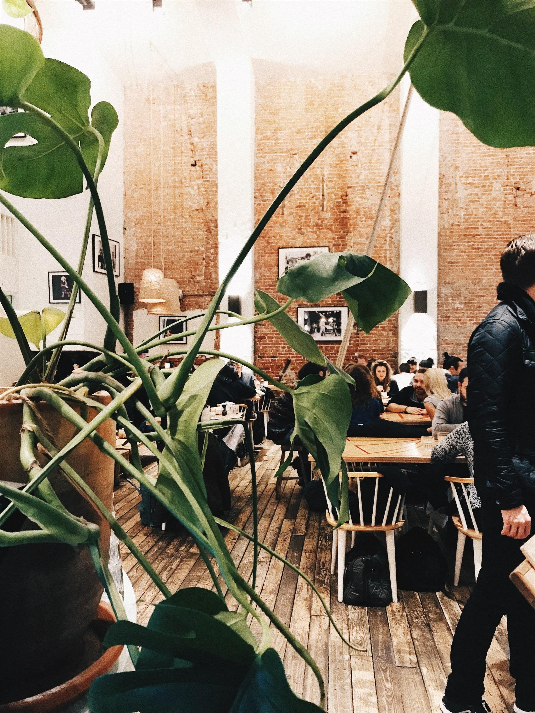 coffee&coconuts in #amsterdam <3