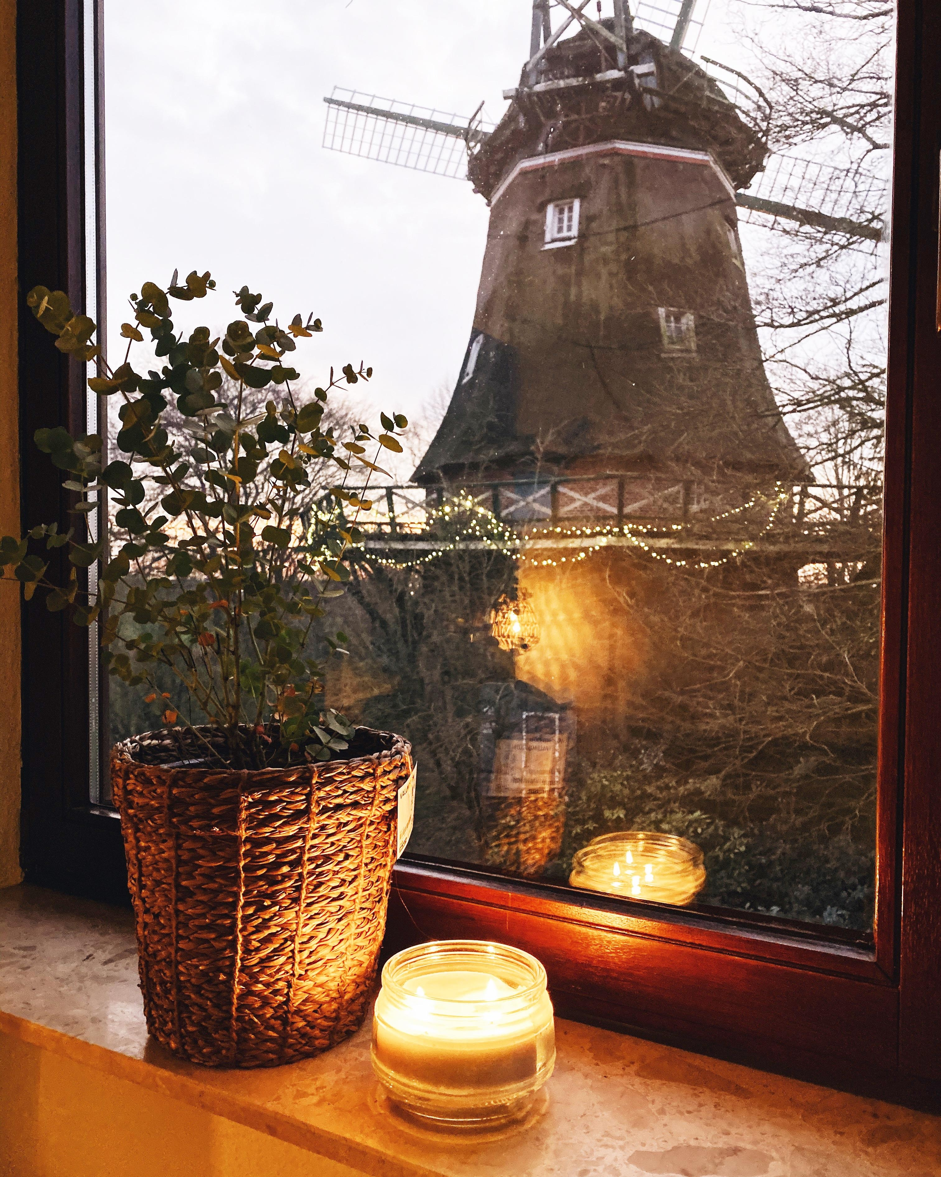 Cozy Christmas time next to the windmill ♡