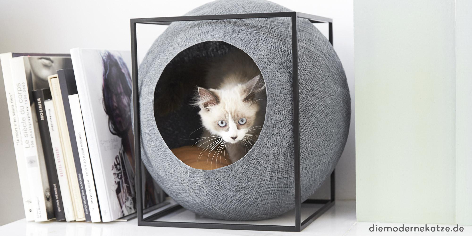 katzenhöhle • bilder & ideen • couch