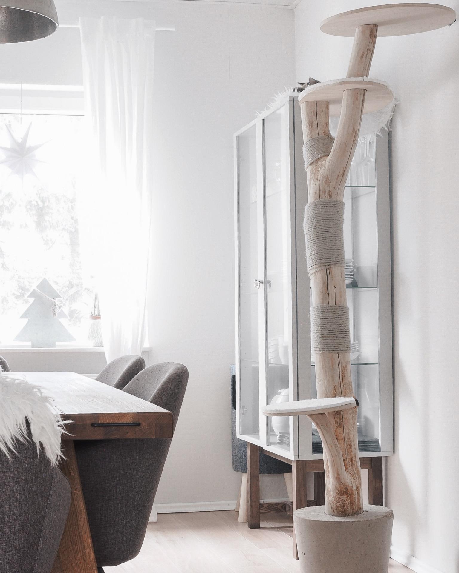 kratzbaum bilder ideen couch. Black Bedroom Furniture Sets. Home Design Ideas