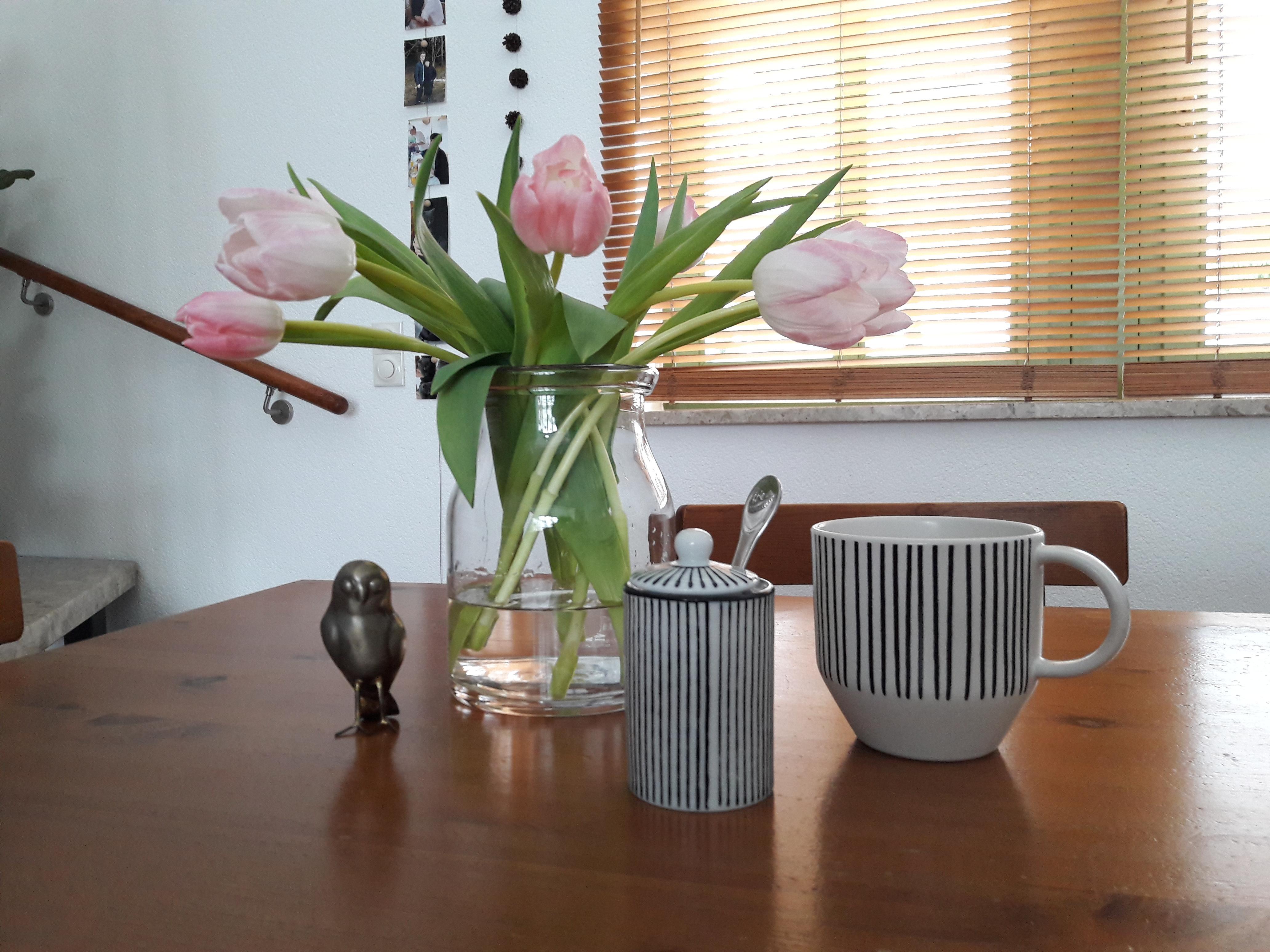 Einmal Tulpen Bitte Fruhling Deko Rosa House