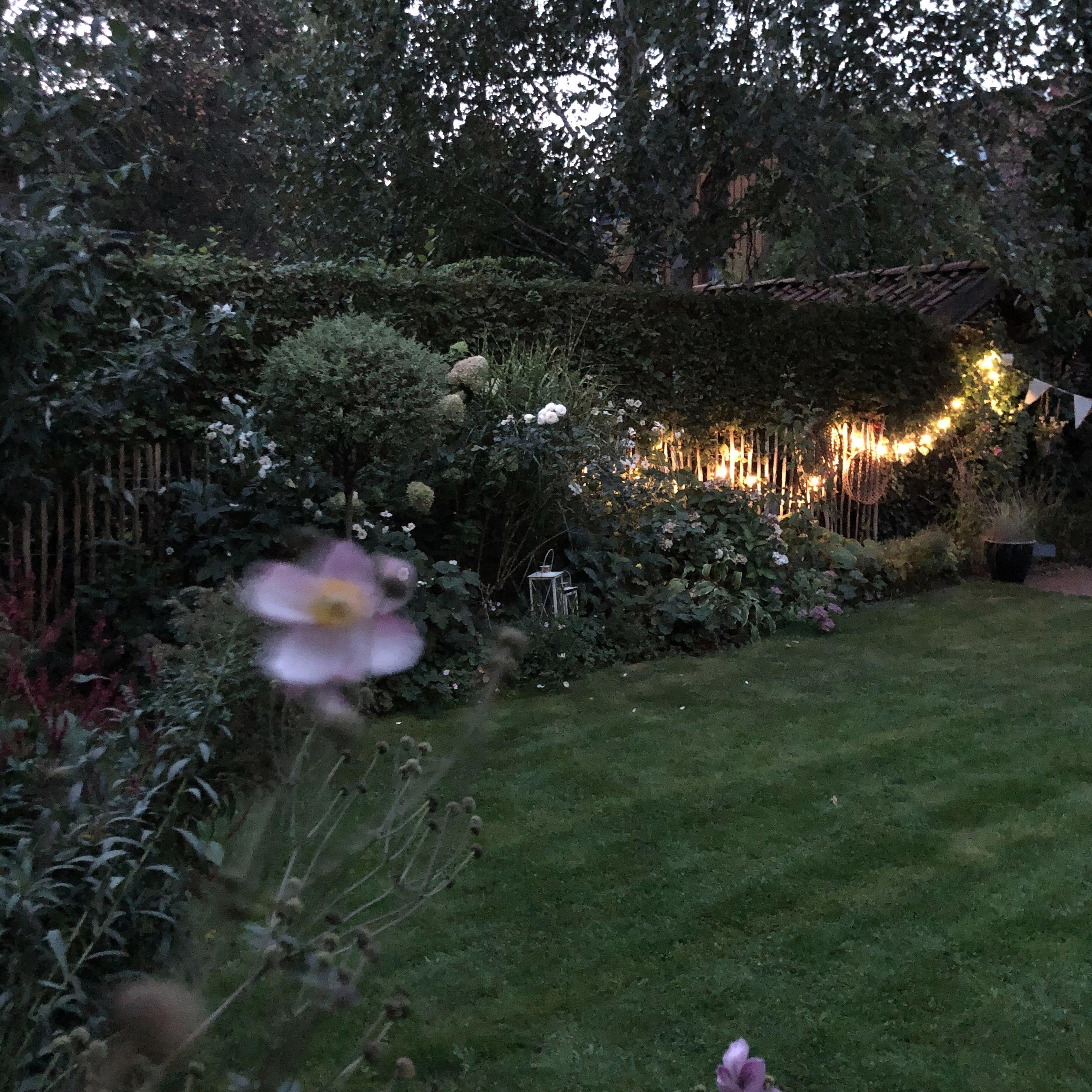 End of a perfect day.