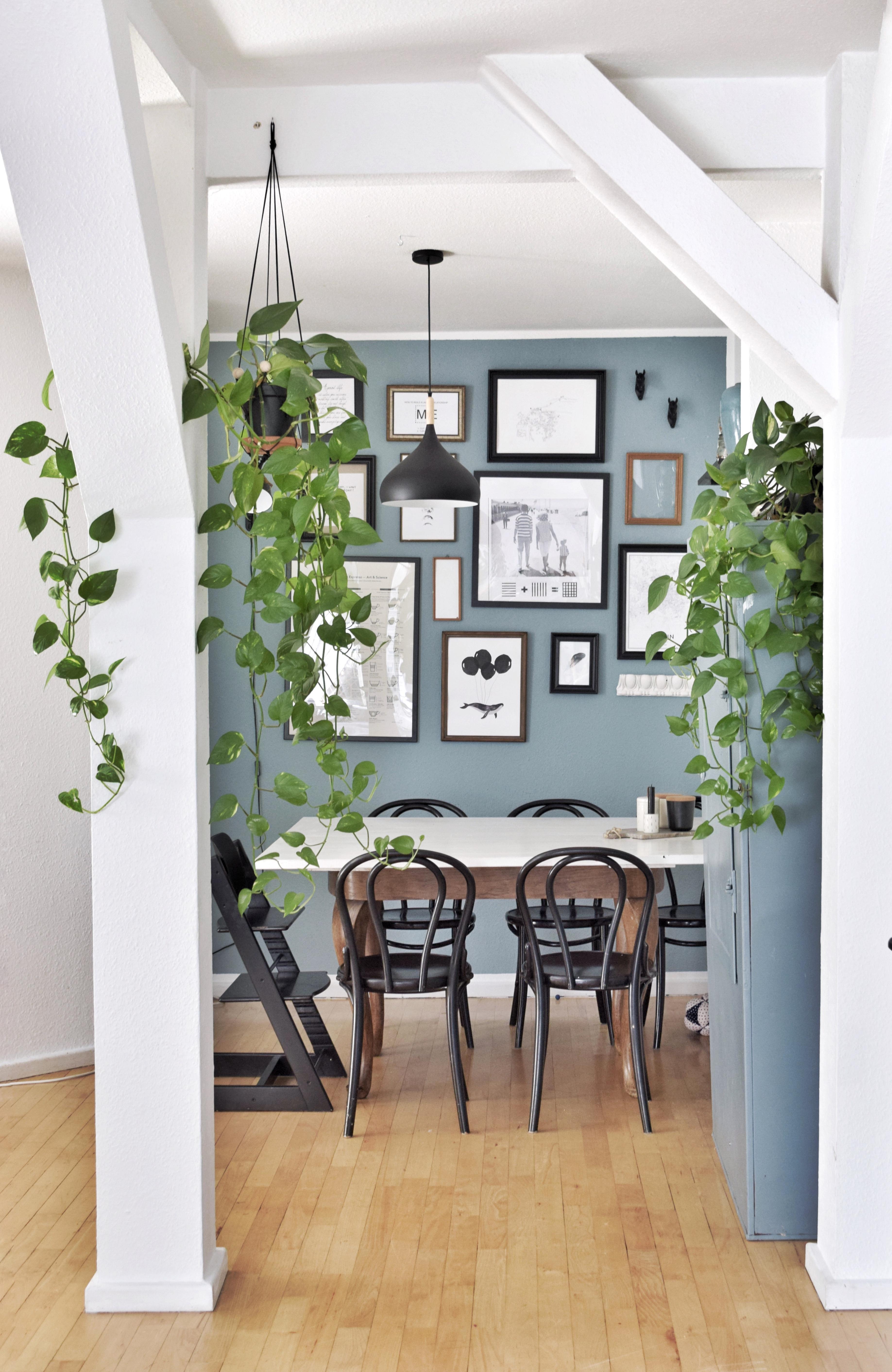 Essbereich Urbanjungle Wandfarbe Bilderwand Pflanzenliebe D1f85358 2ddf  4c55 Bf8d Dde67331c352