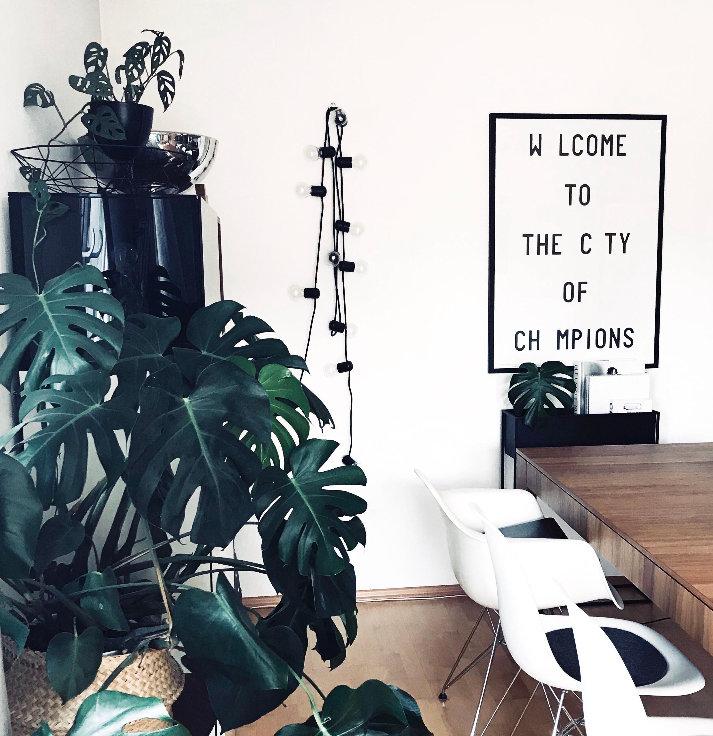 Esszimmer. 🖤 #esszimmer #livingchallenge #interior ....