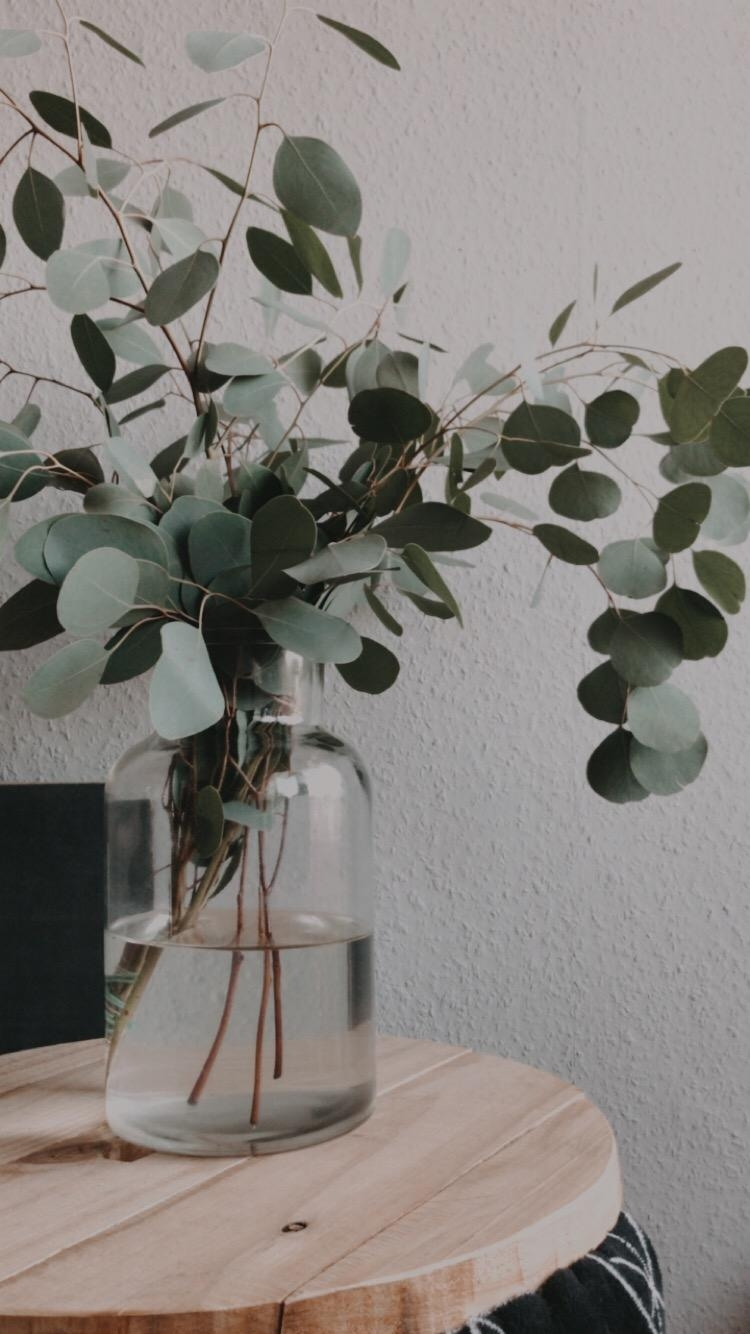 Eucalyptus-Addicted #eucalyptus #interior #decoration