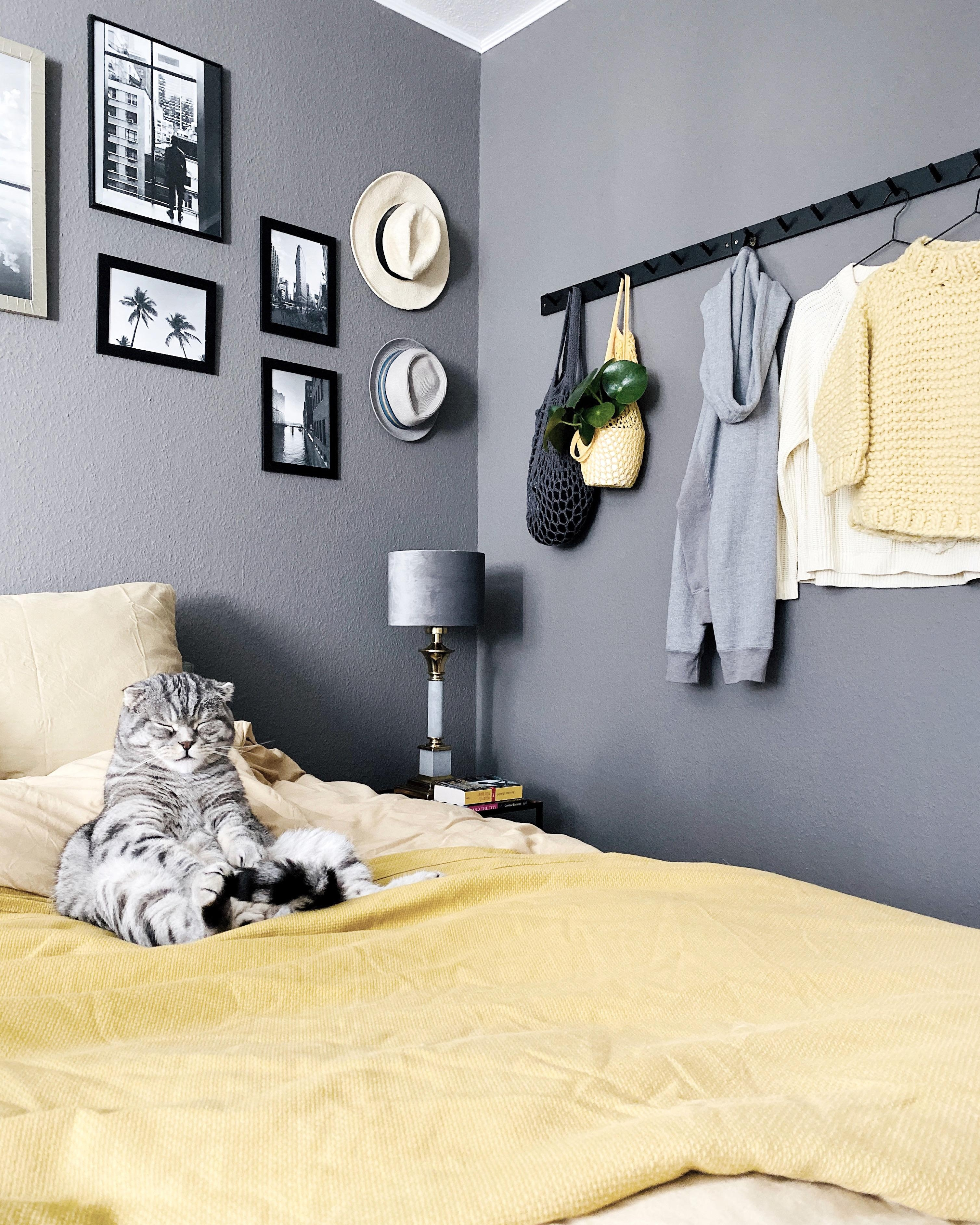 Face zu montag  yellowisthenewblack yellowaddicted interior bedroom bedroomgoals hygge monochrome interior  7161dccb d089 40e8 b005 03bc222adafc