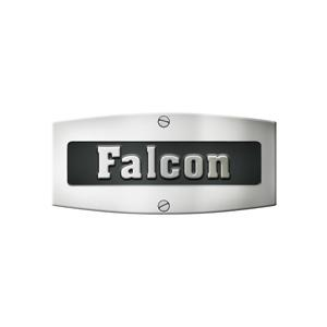 FalconGermany