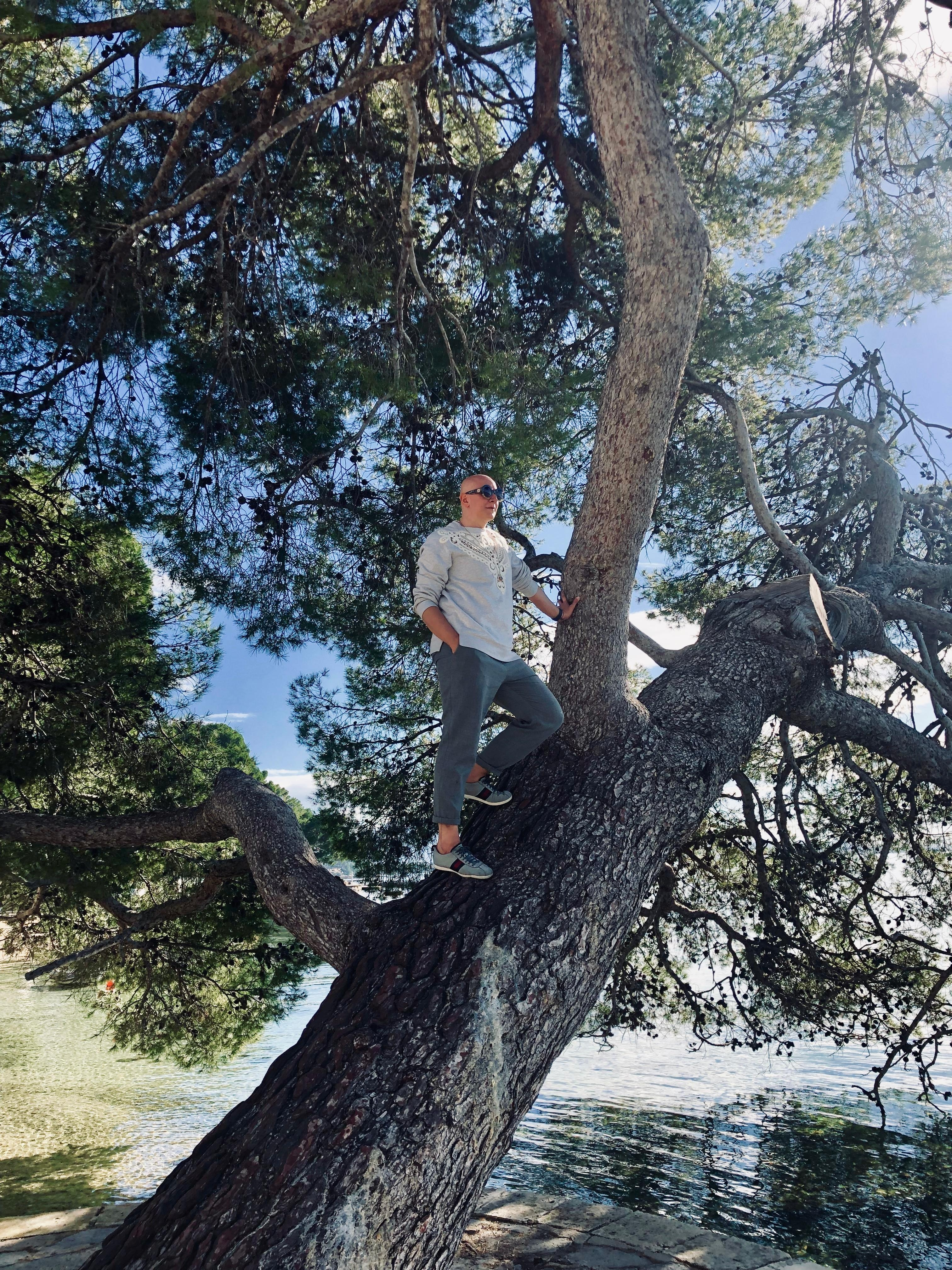 Fashionable Tree Climbing. #fashion #style #nature #travel #weekend #mallorca #sun #friends