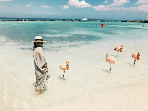 Flamingofreunde 
