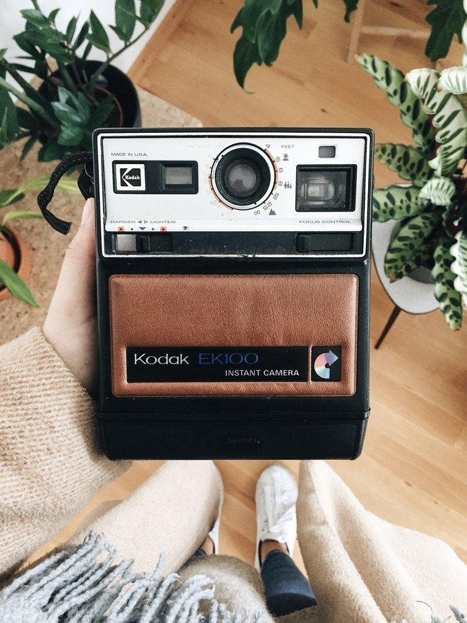 Flohmarktfund. #urban #plants #retro #vintage #camera #polaroid #analog #home #inspiration #decoration #interior