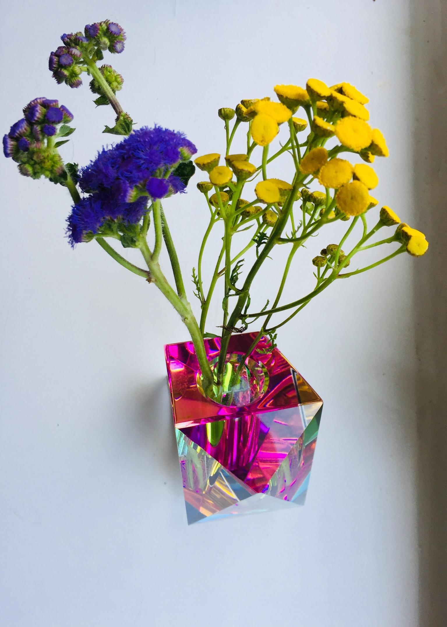 #flowers #colors #crystal #fundamentalvase