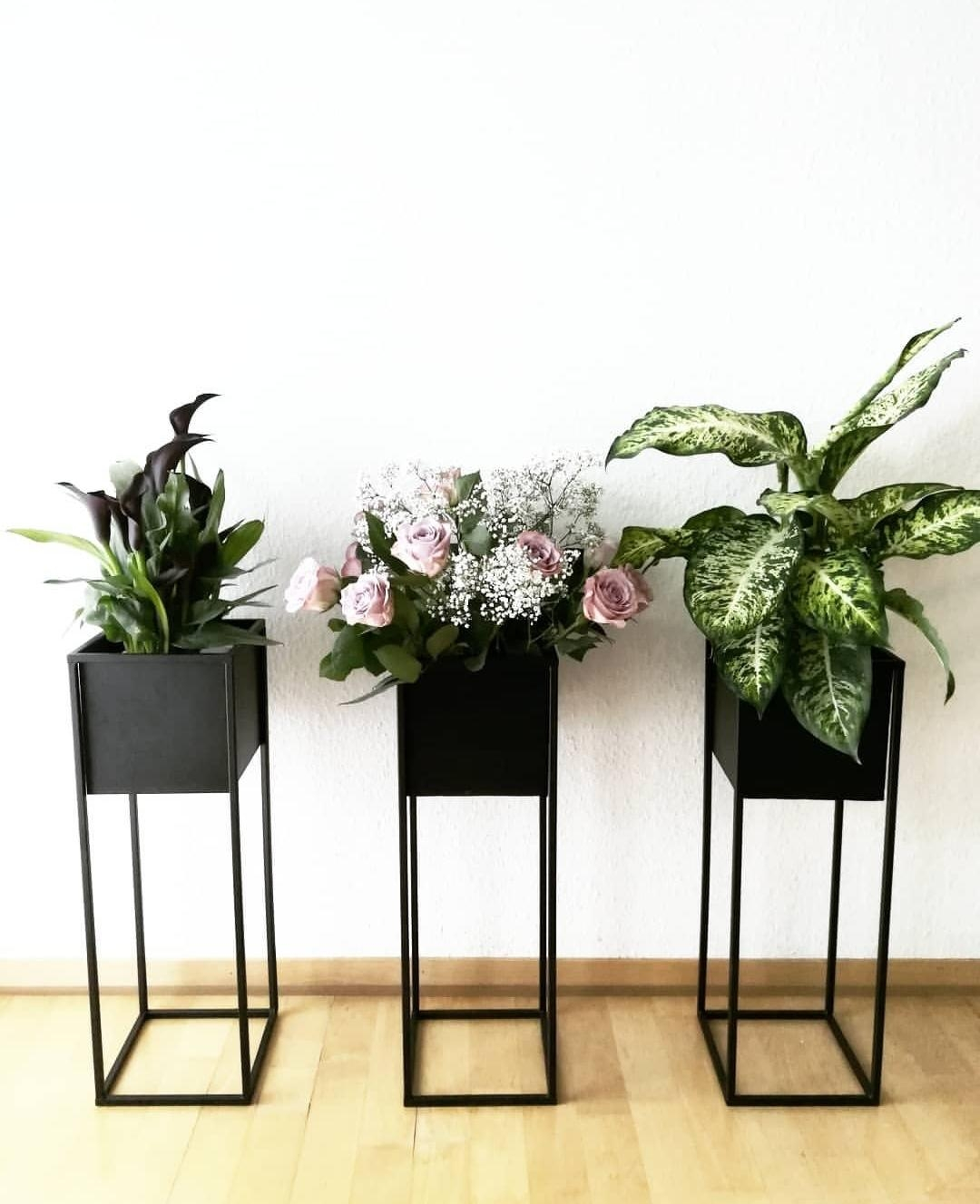 Flowers #whiteliving #blackinterior #plantsmakemehappy #flowersmakemehappy #keepitsimple #wgzimmer