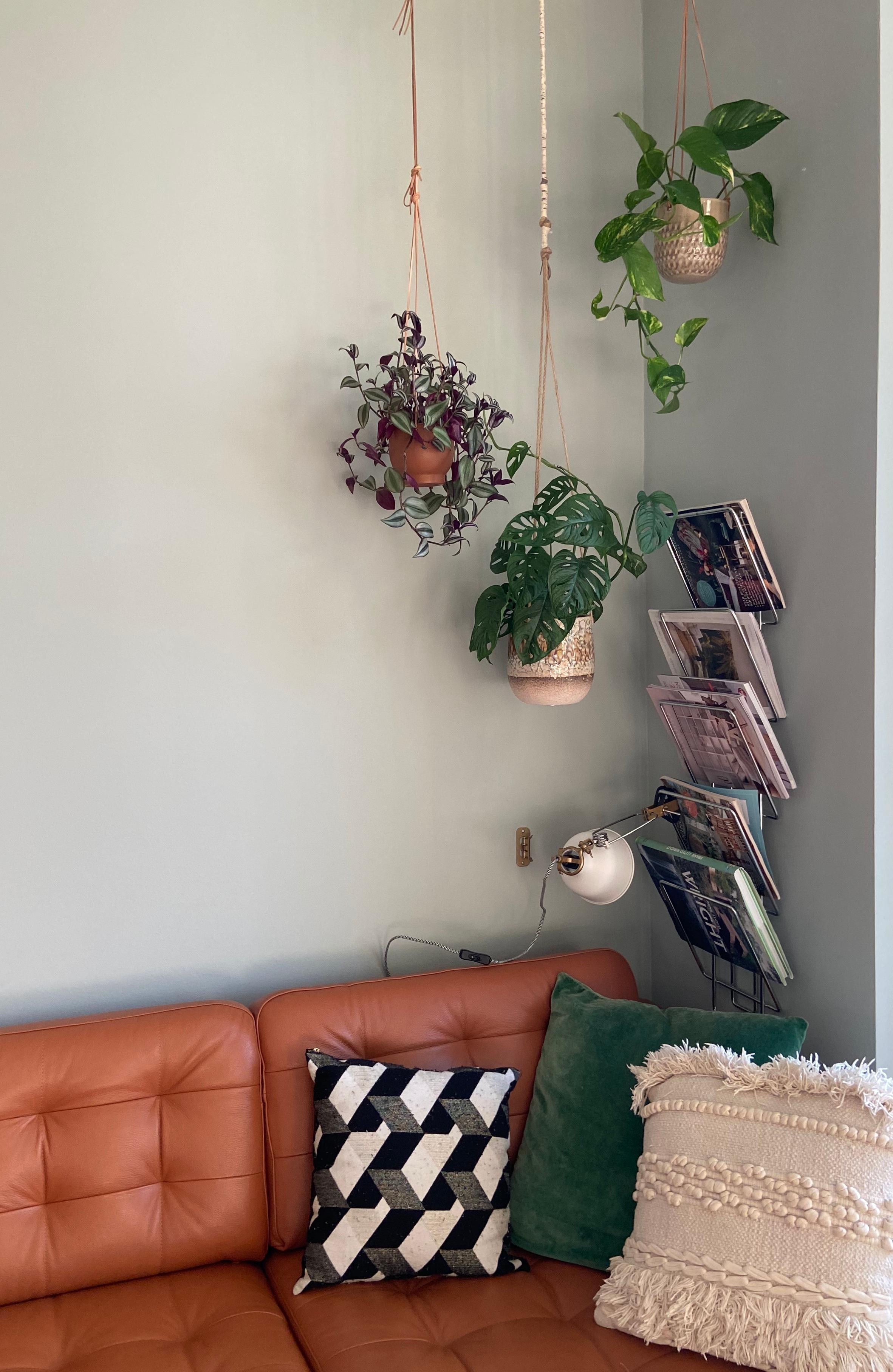 Blumenampel • Bilder & Ideen • COUCH