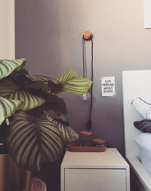 Good Morning Snooze Button 🌿