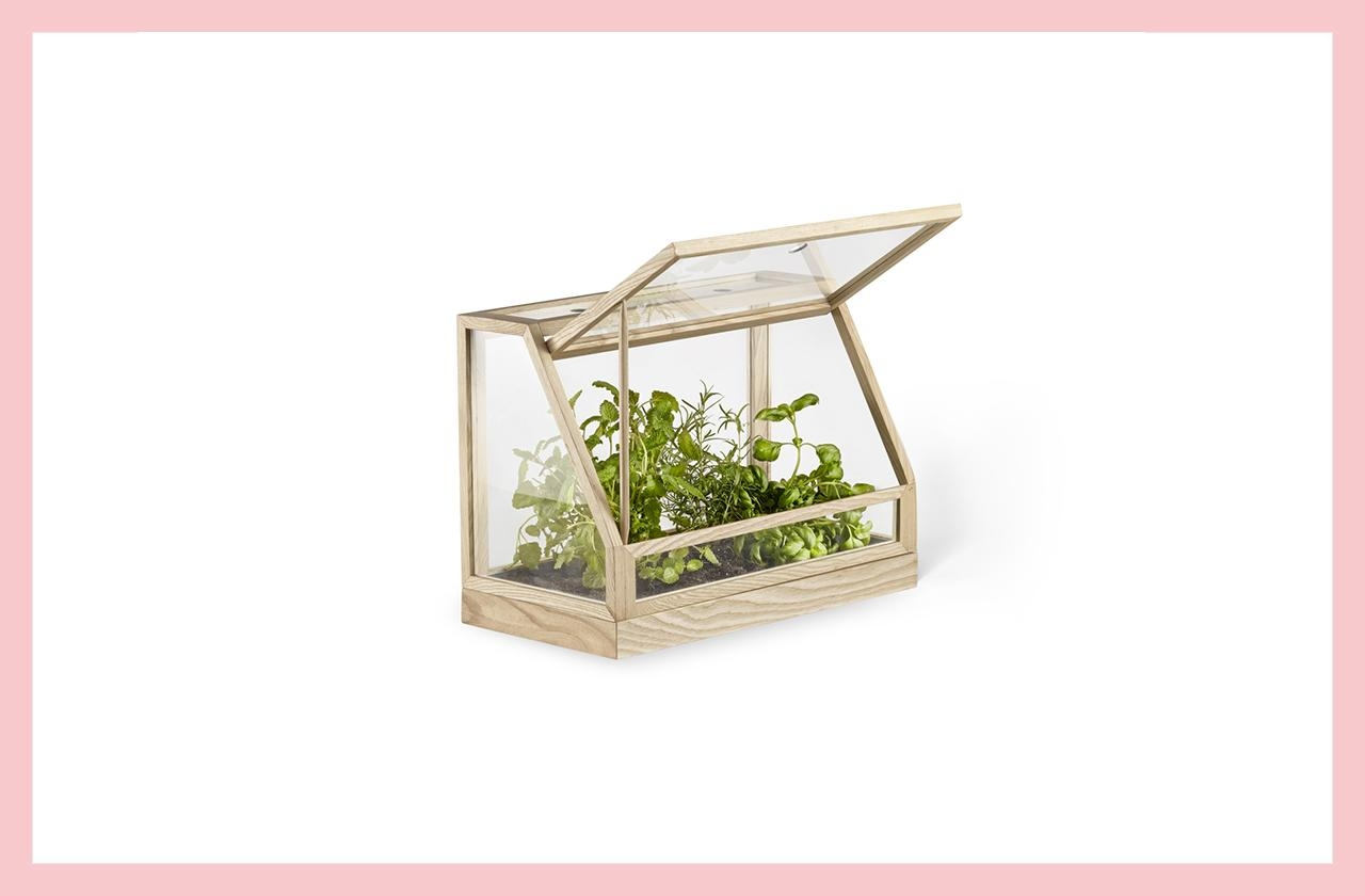 Greenhouse mini von design house stockholm fuer ca 289 euro 358  a0b6e31d 32df 476c aa93 7092ffad20ea