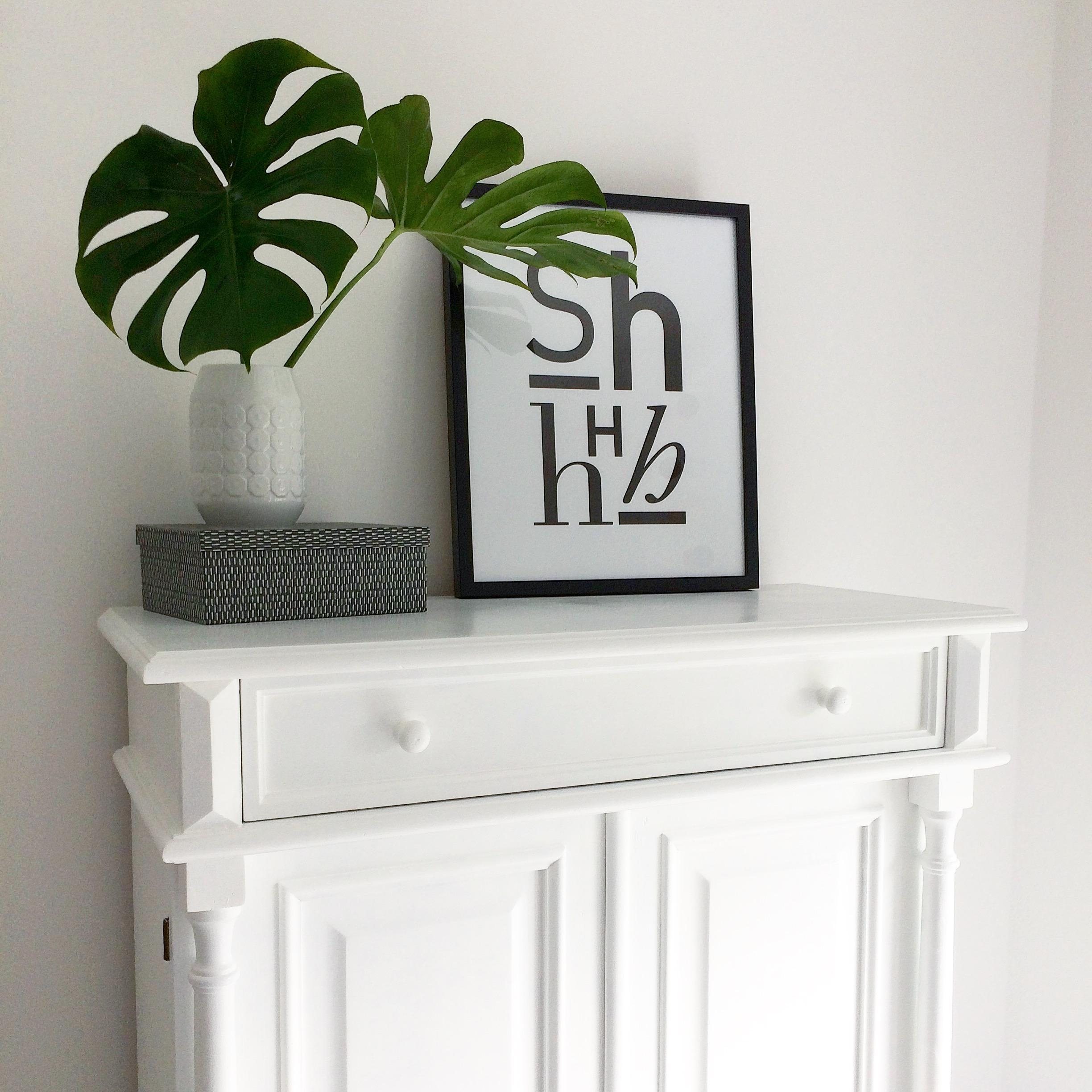 Große Monsteraliebe ❤️ #monstera #urbanjungle #interior #interiordesign #whiteliving #minimalism #monochrome
