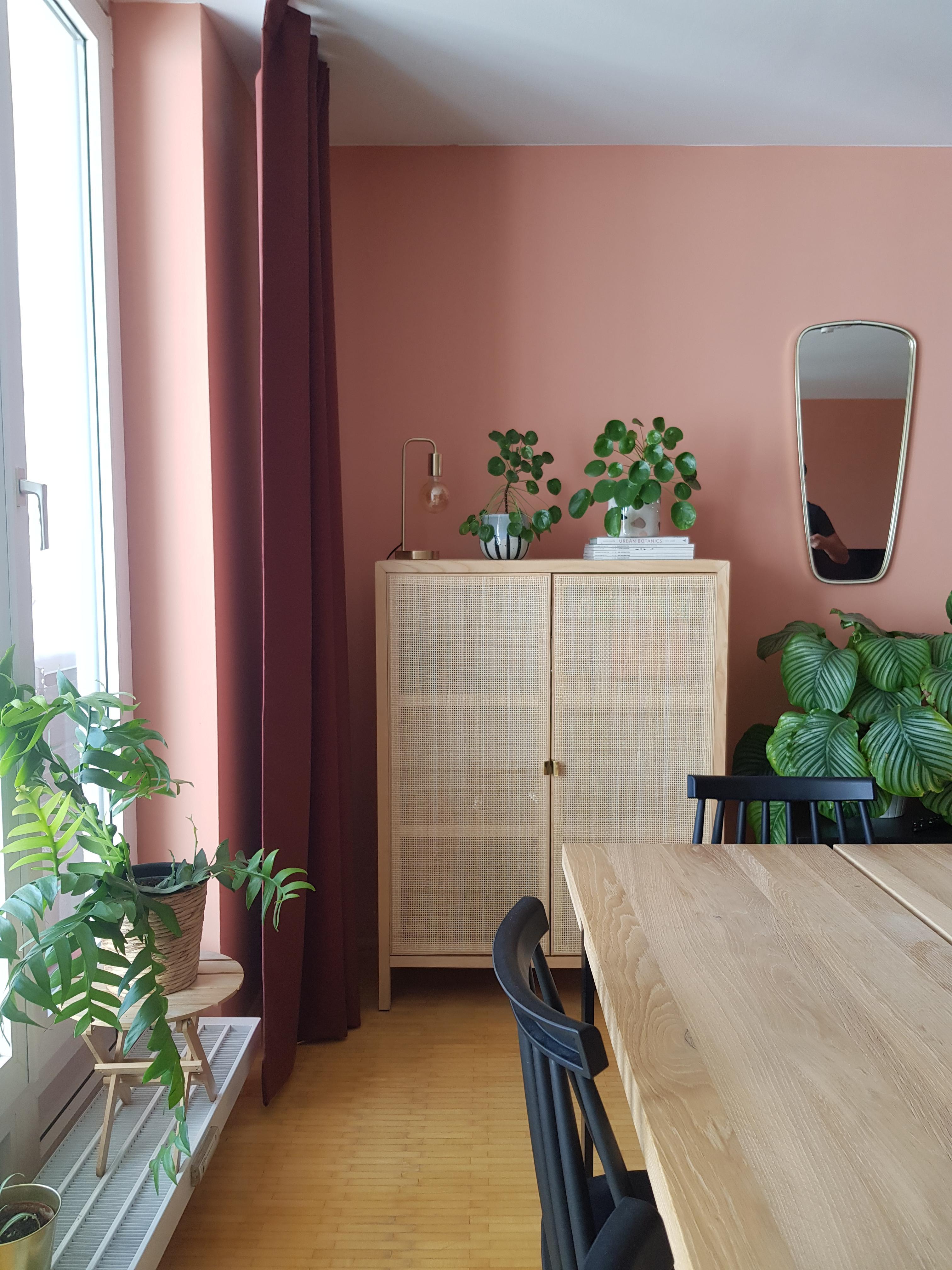 Grün trifft auf Rosa im #wohnzimmer #diekraftderpfla