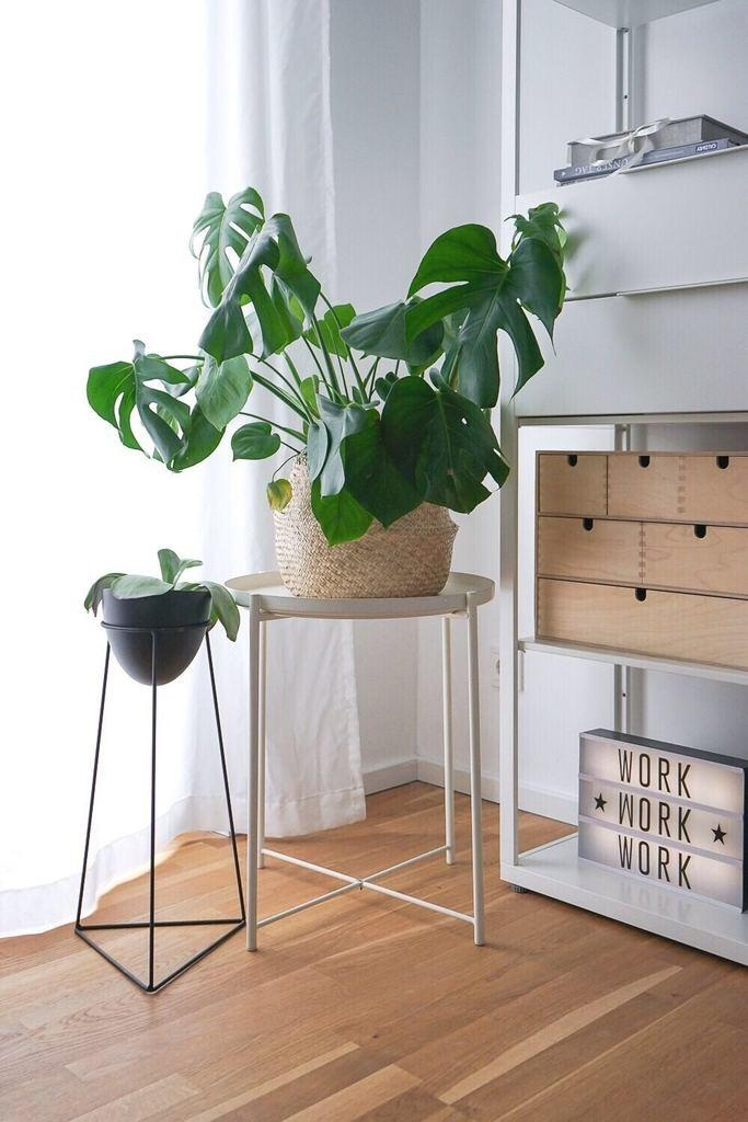 Grüne Grüße aus dem Home Office 
