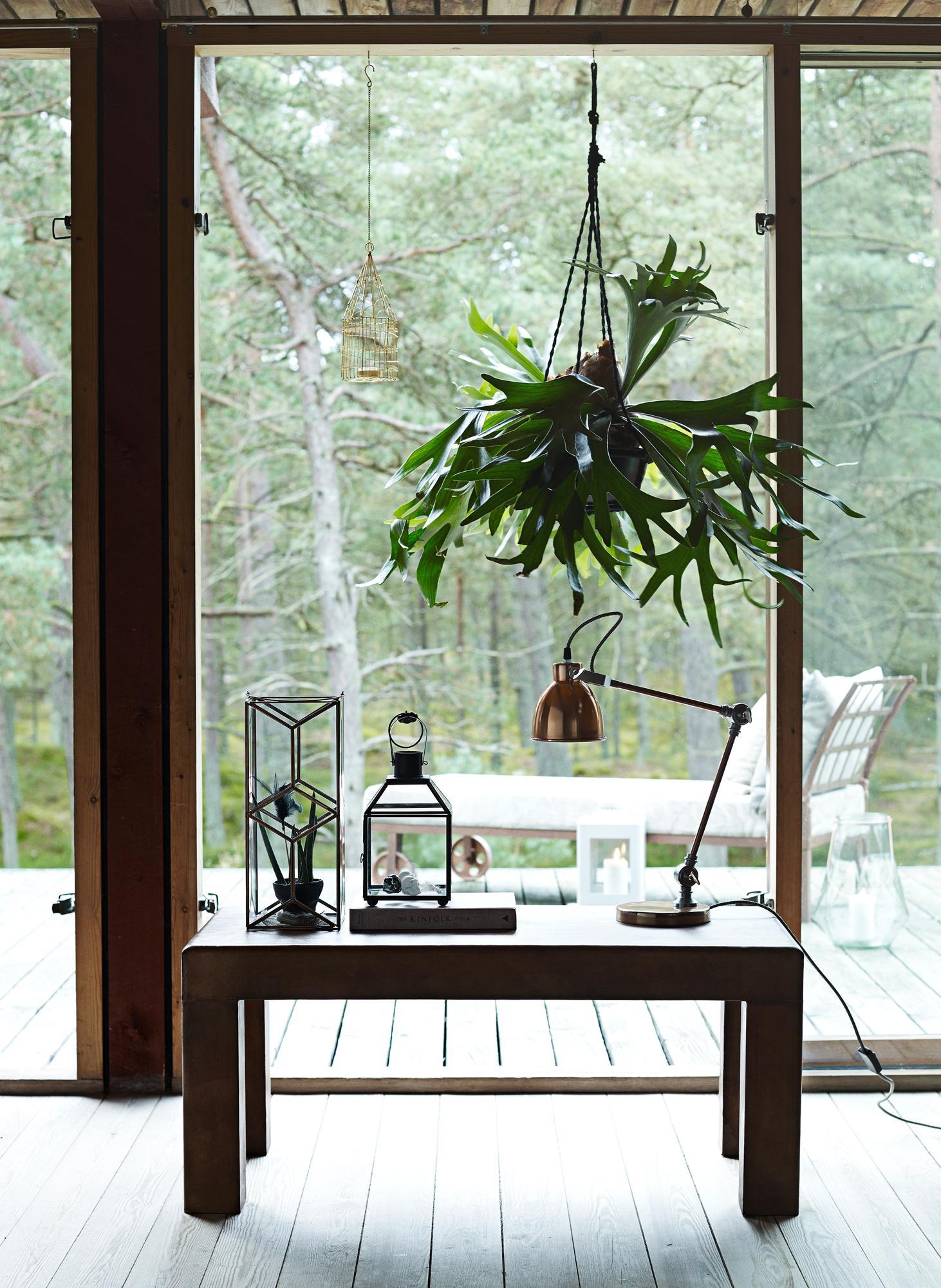 h ngepflanzen dekorieren das wohnzimmer wohnzimmer. Black Bedroom Furniture Sets. Home Design Ideas