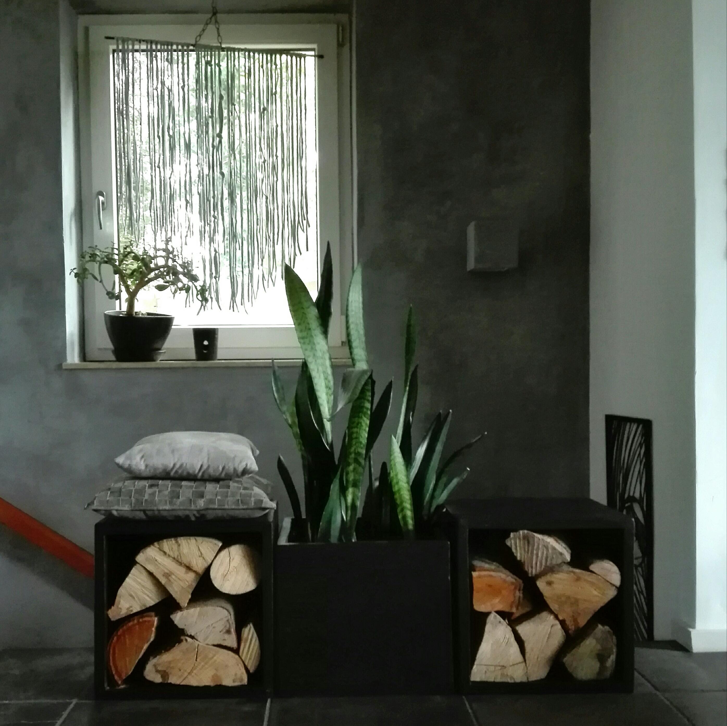 Herbst Minimalistisch Wohnzimmer Kalkputz Diy