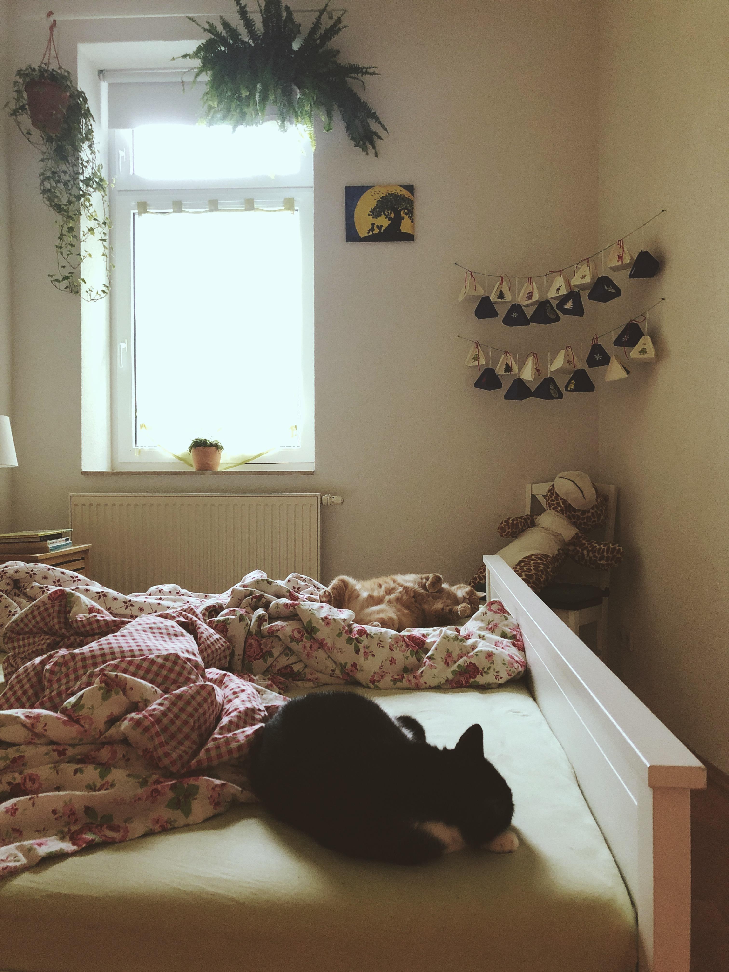 au enk che bilder ideen couch. Black Bedroom Furniture Sets. Home Design Ideas