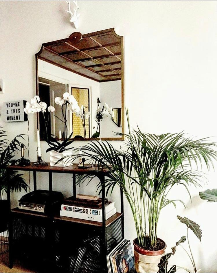 Home happy place after a long day home urbanjungle livingroom wohnzimmer plants mirror spiegel november wien  01f88727 6eac 4f2c b555 d68c619c7474