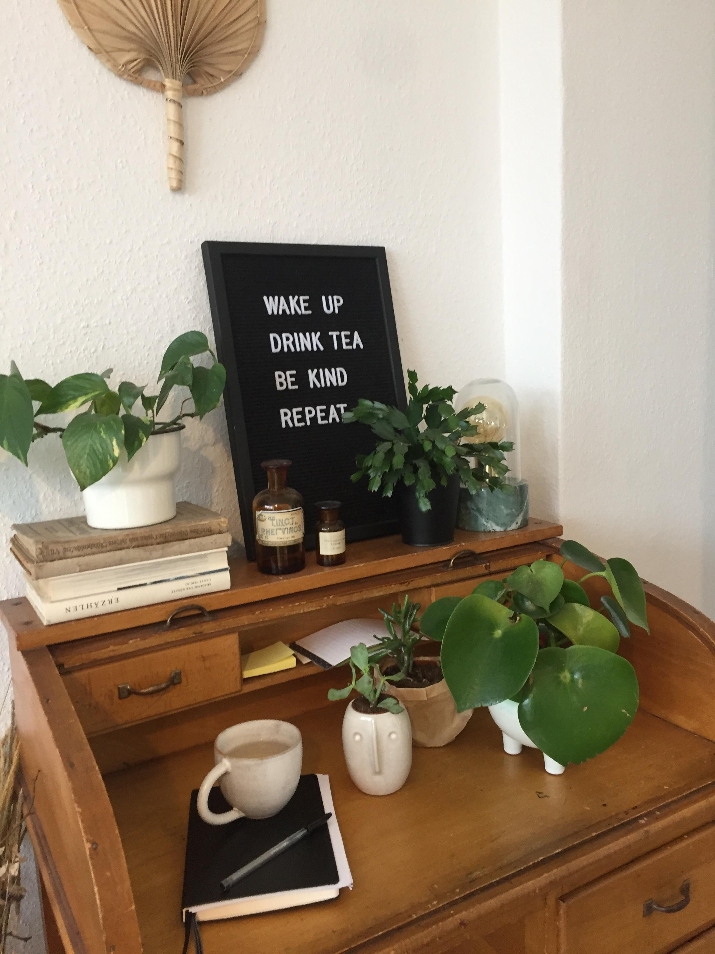 Homeoffice starts #homeoffice #plants #tea #interior