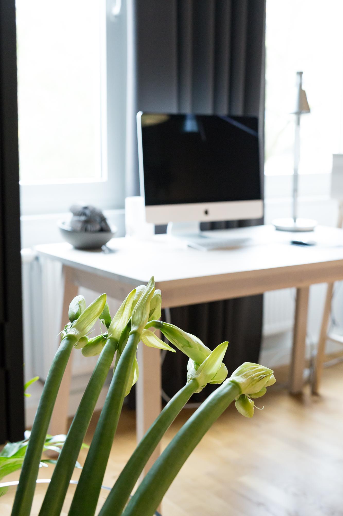 #homestory #arbeitsplatz #homeoffice #arbeitsplatzgestaltung #schreibtisch