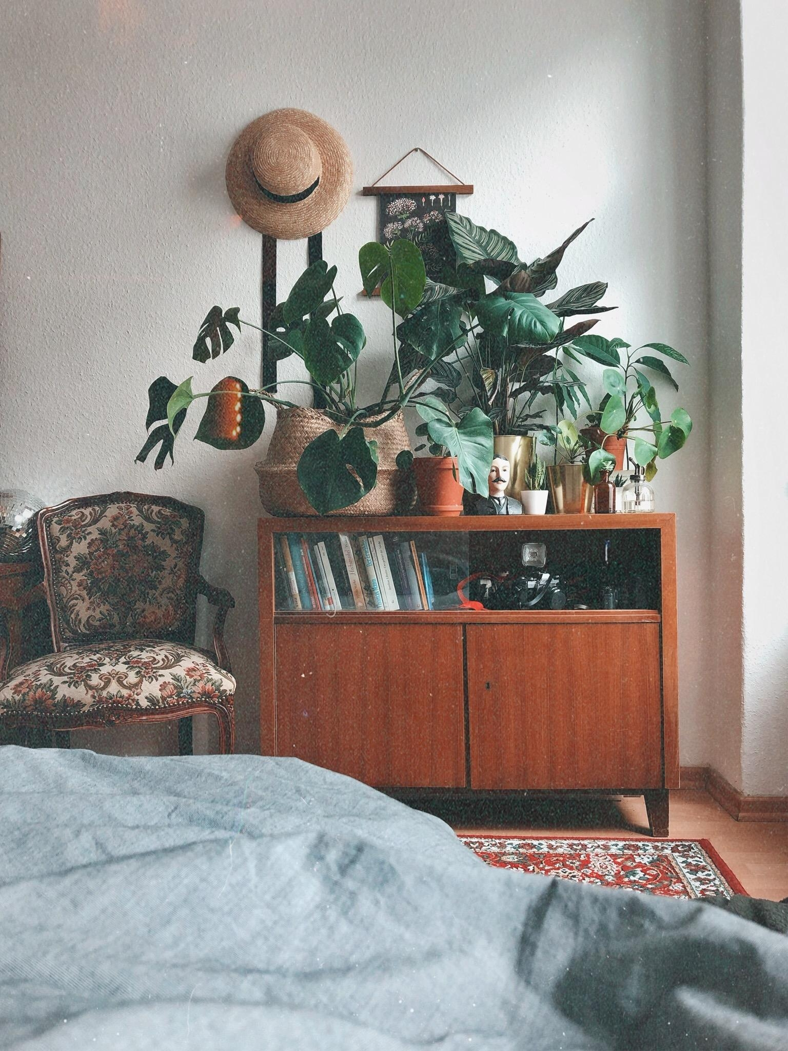 #homesweethome with my little plant Family in #berlin