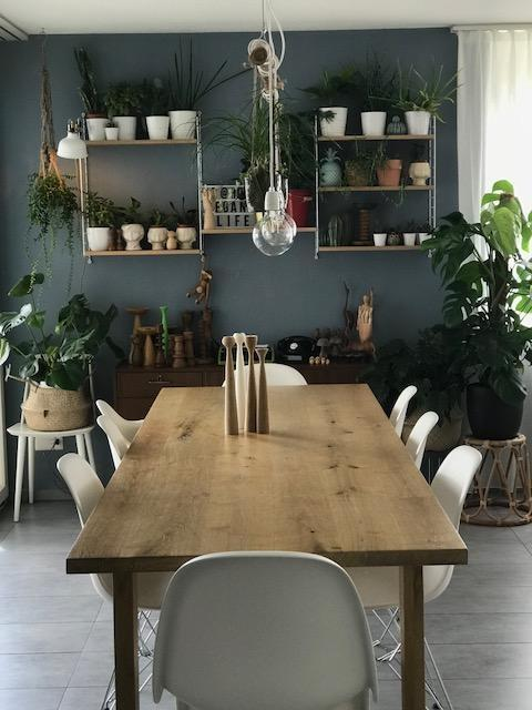 #hygge #skandi #midcentury #stilmix #blauewand #urbanjungle have a nice day all of you