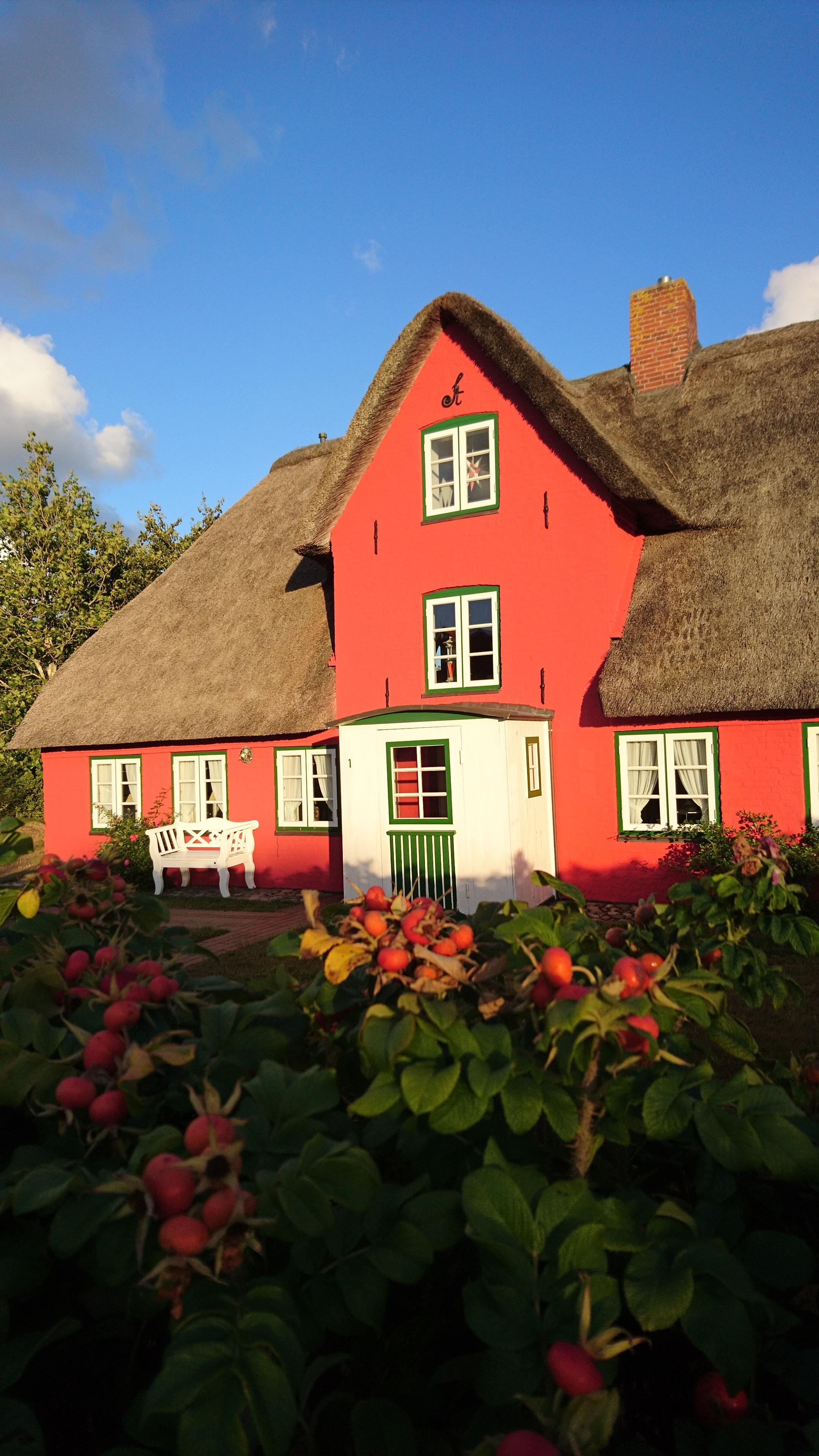 I felt in love with the red house ☀️
