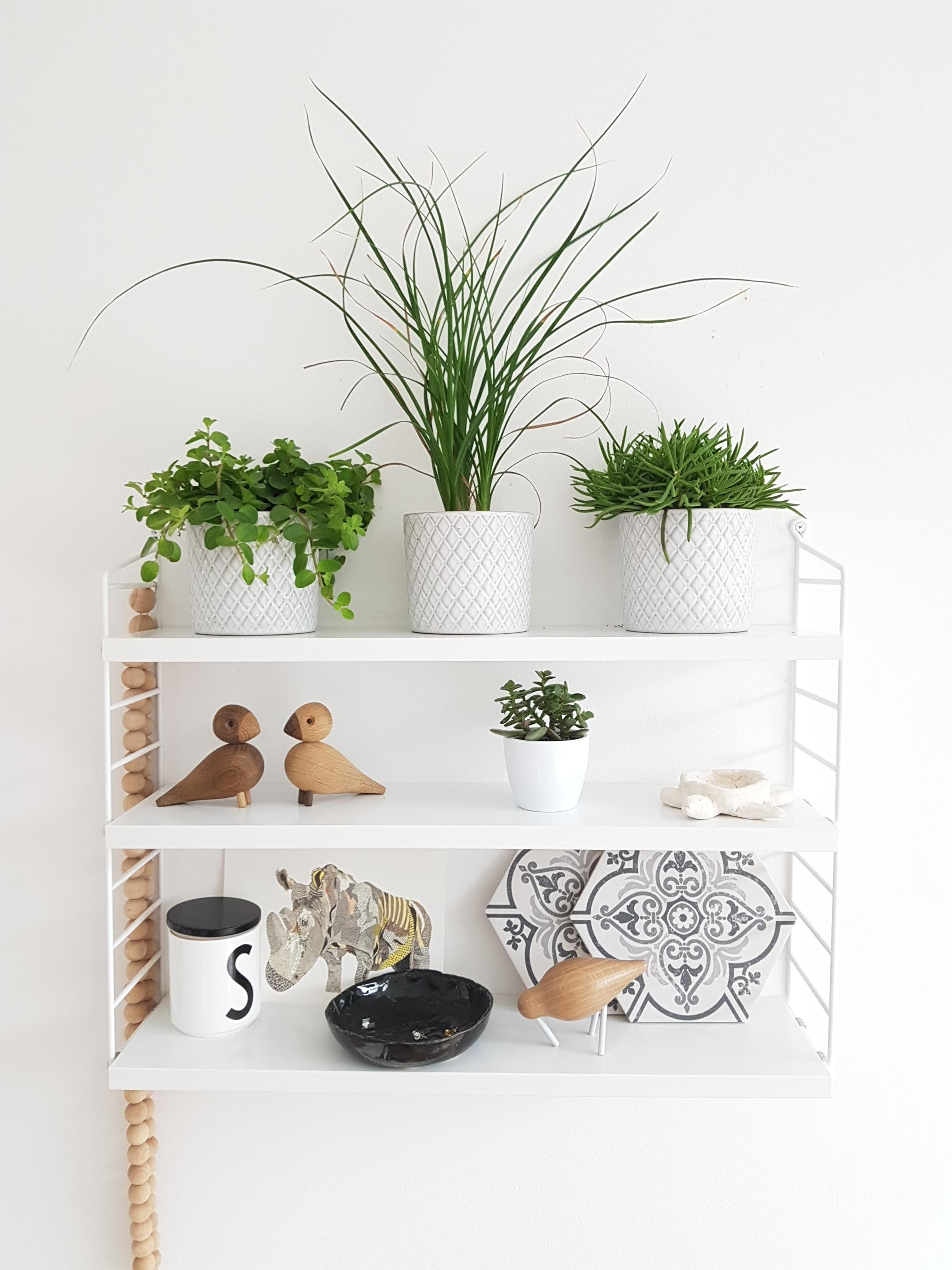 Immer wieder anders dekoriert - das #string Regal. #shelfie #shelf #deko #whiteliving #scandi