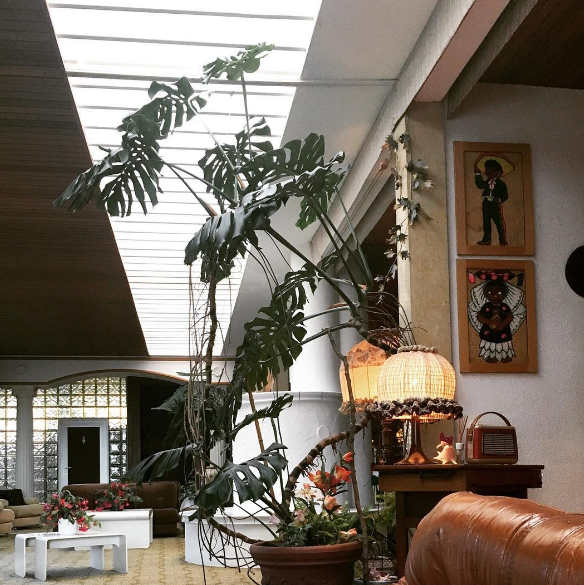 Interior love im parkhotel1970 🌿 #hotel #interior #interiordesign #monstera #plants #livingroom #design
