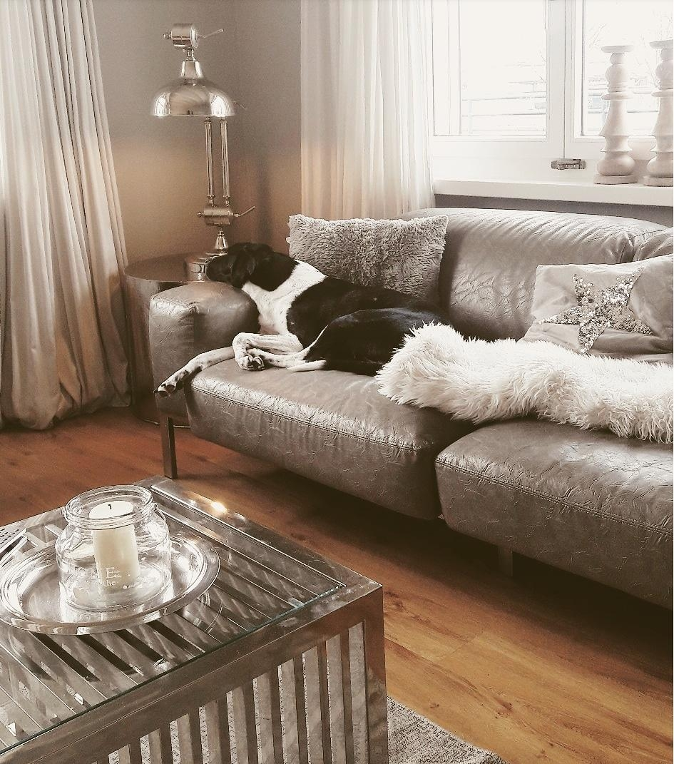 Interiorstylist doglover couch timetorelax livingroomdesign homecoaching livetolife  c3990ccf 302d 434b 9089 b45023e5255f