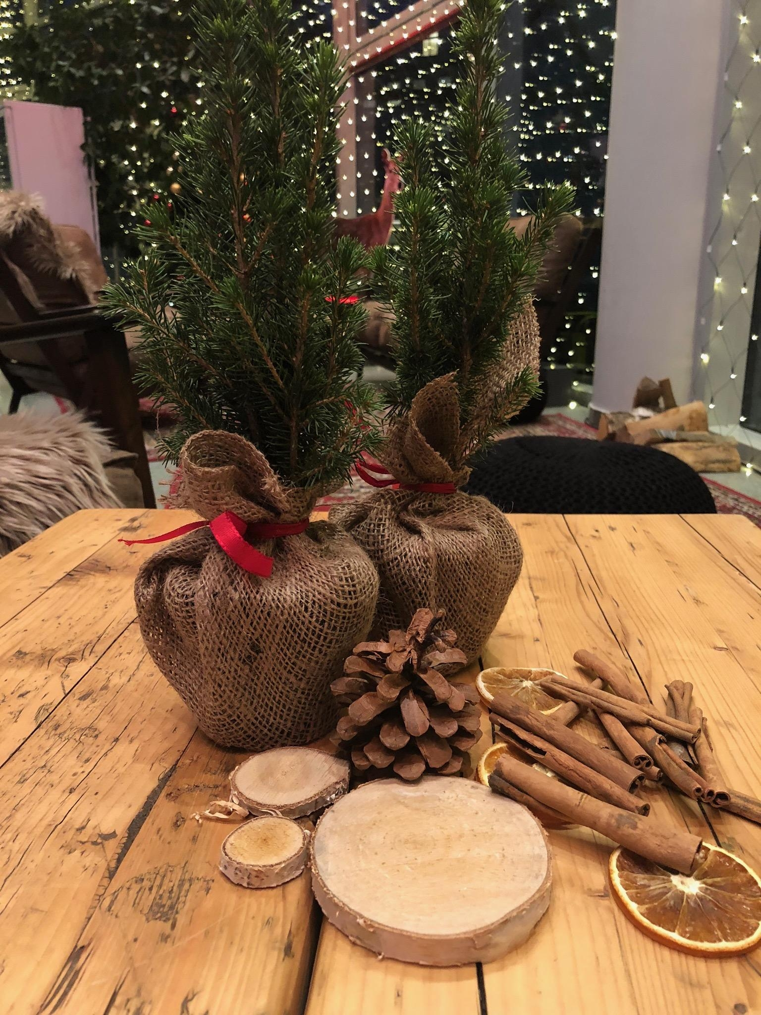 Its beginning to look a lot like christmas ... #weihnachten #weihnachtsdeko #zimtstange #orangen #holz #tannenzapfen