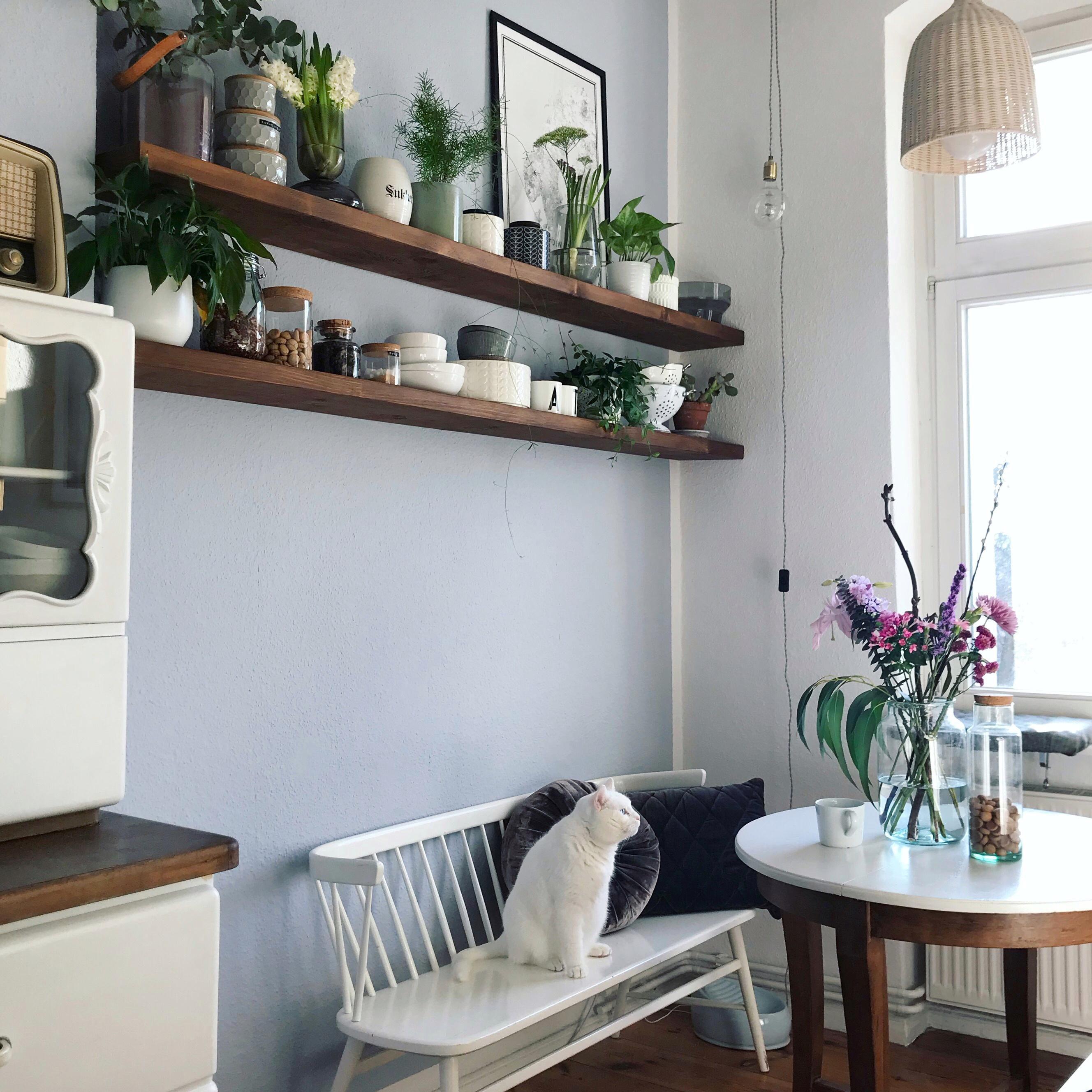 Wandregal Ideen: So schaffst du dekorativen Stauraum!