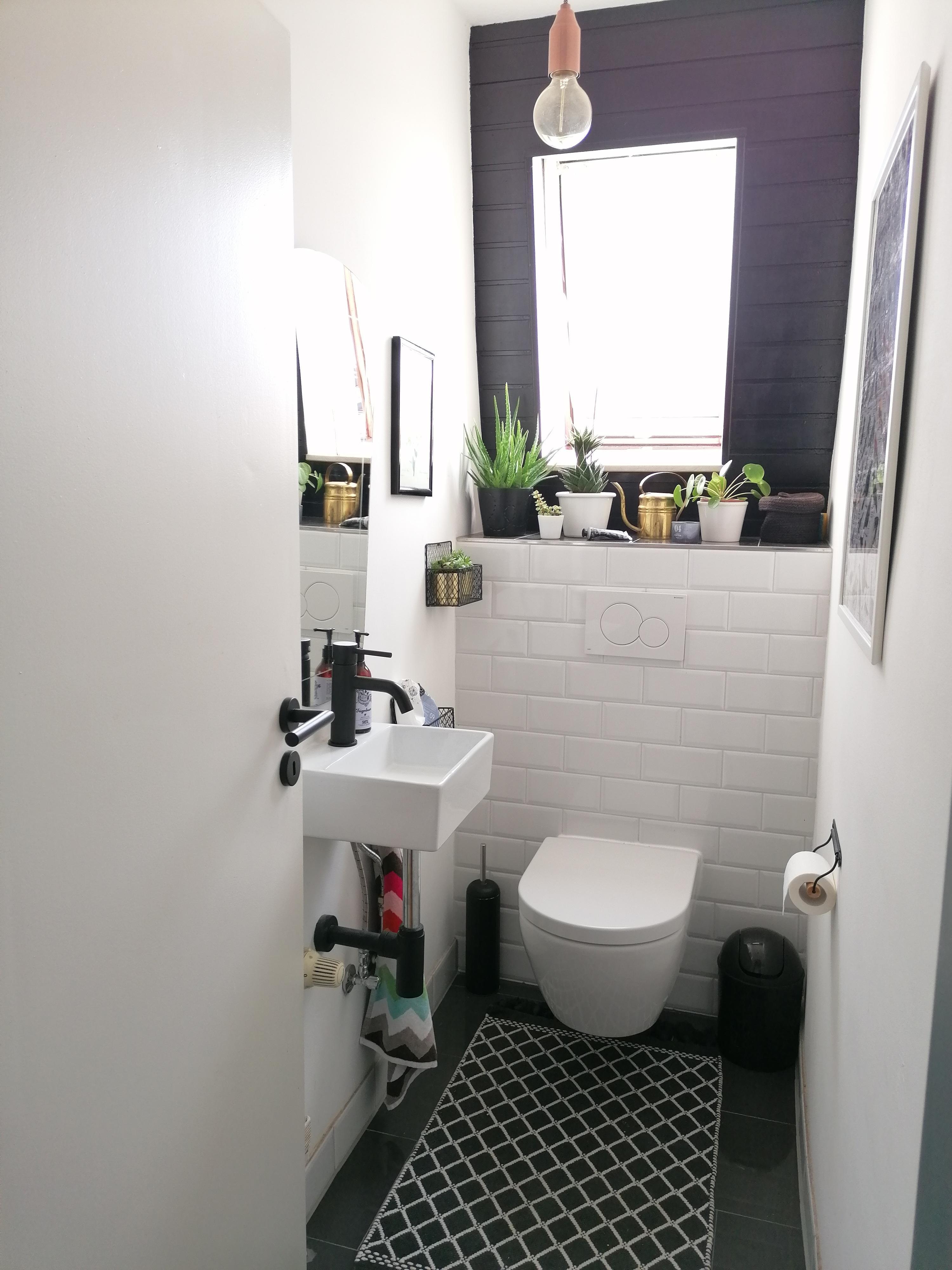 Gäste-WC gestalten: Einladend statt nüchtern, so geht\'s!