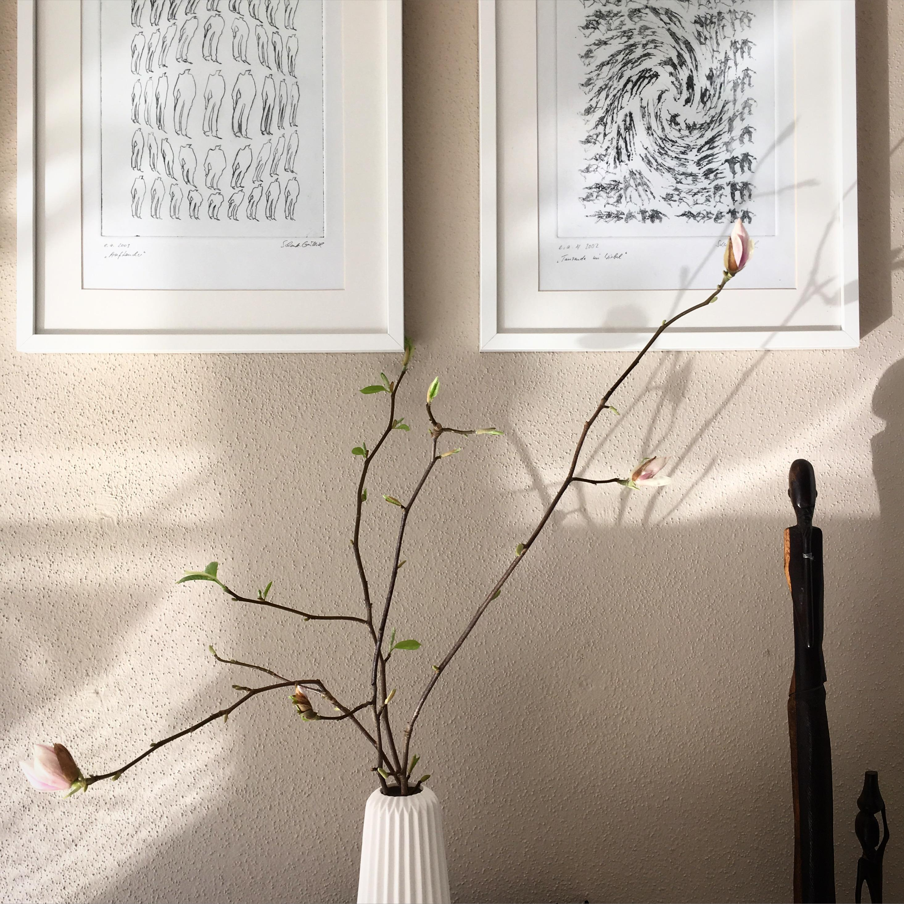 Magnolie #bilder ©ALL ABOUT DESIGN by Christina Harmsen