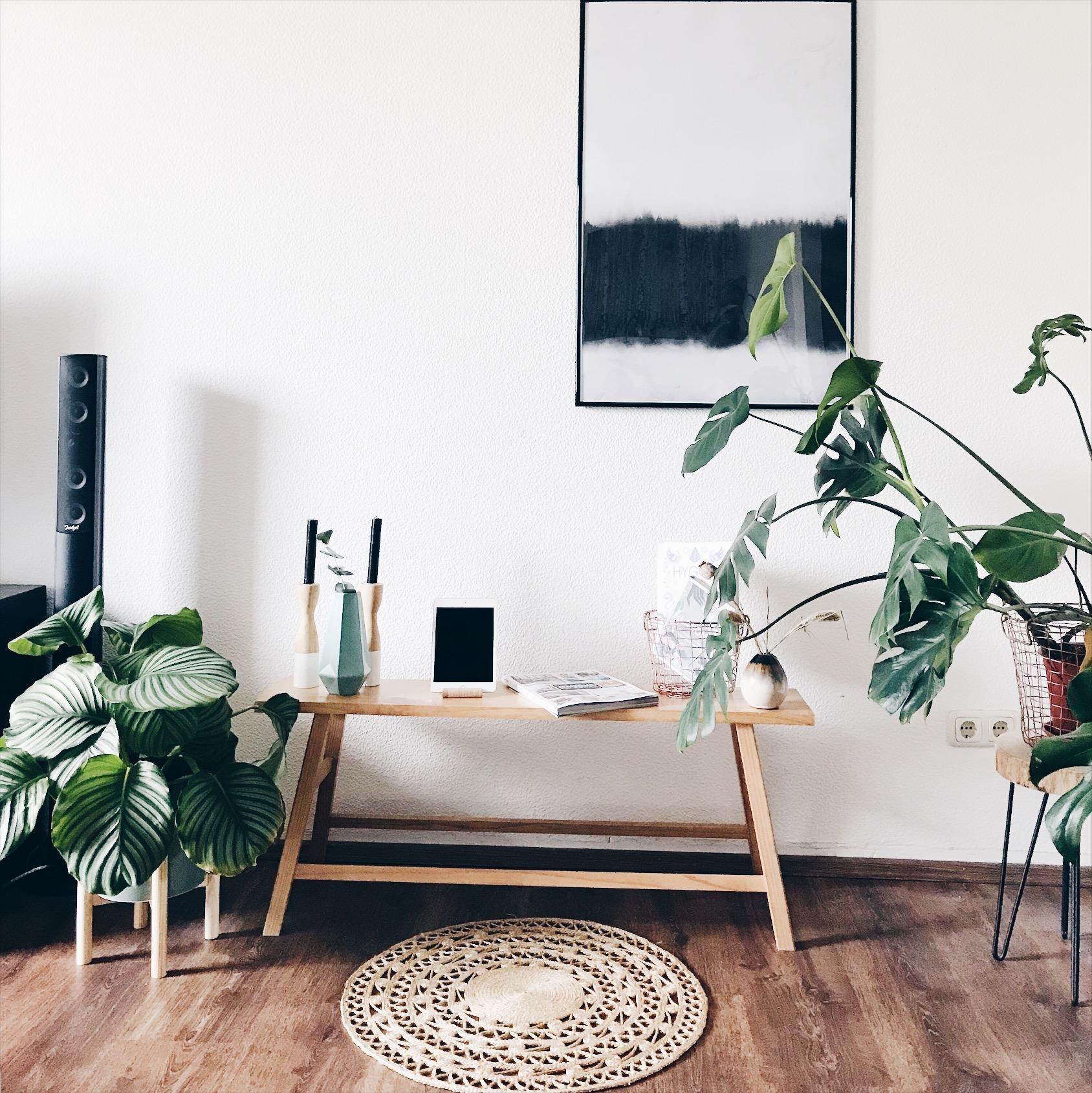 mein aktuelles lieblingsfoto wohnzimmer livingchallenge couchstyle couchmagazin interior zimmerpflanze