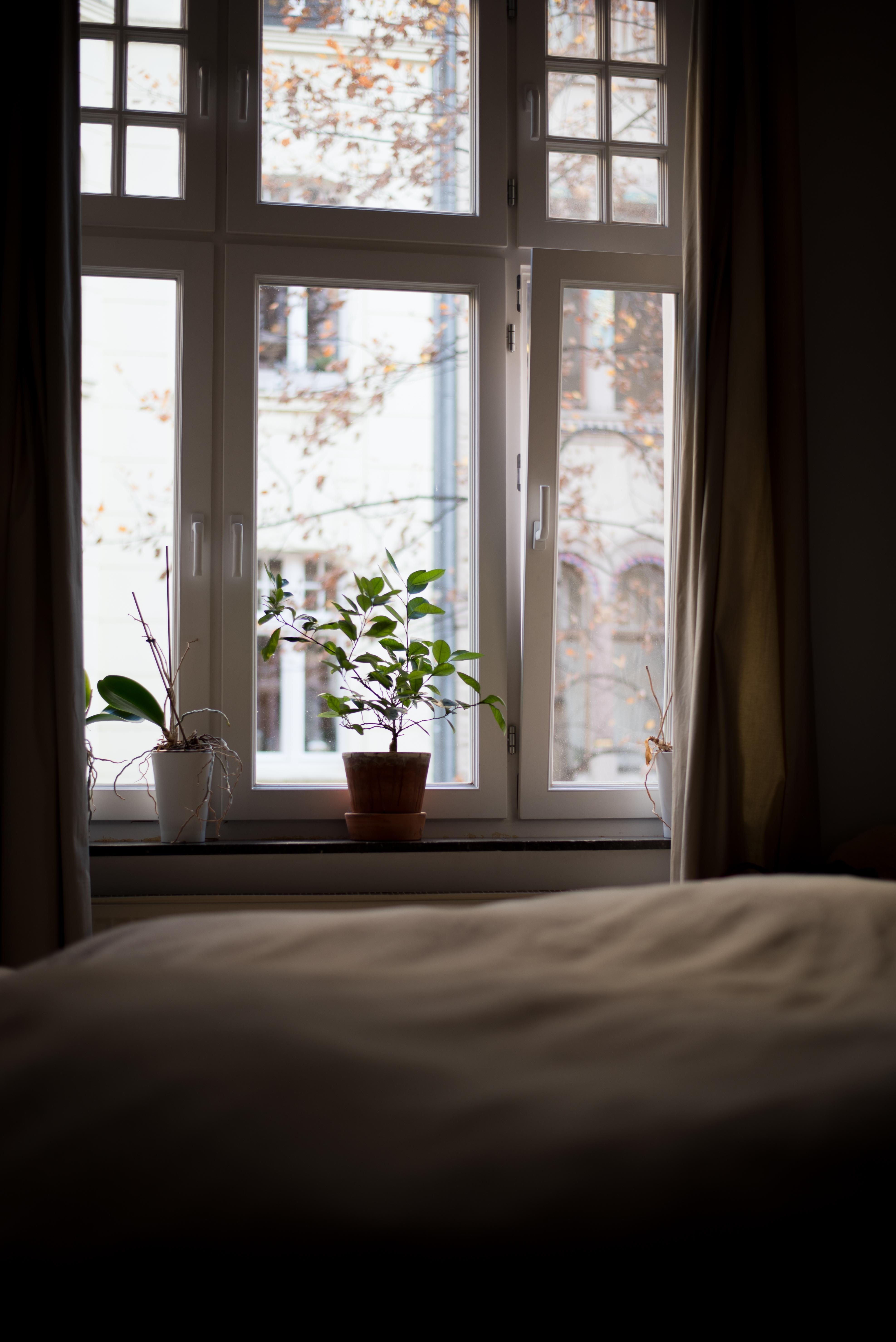 Mein Blick Heute Morgen Aus Dem Bett Schönen Dienst